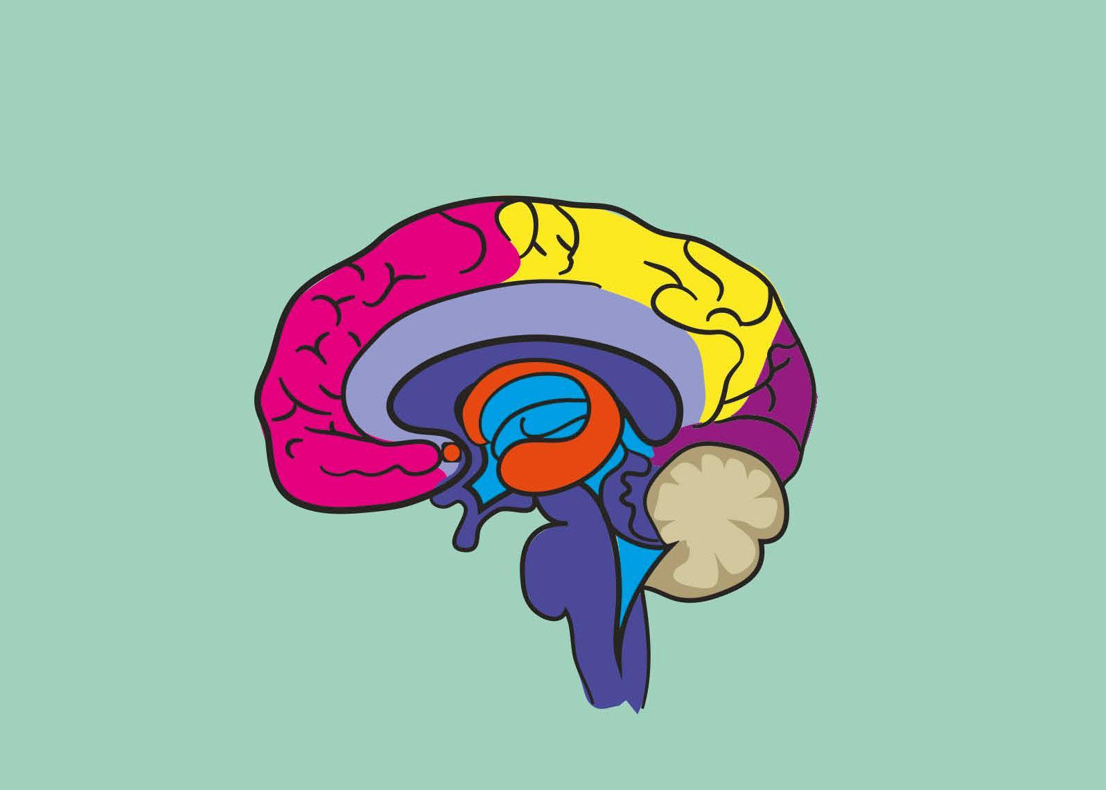 Brain Twisters - Magazine cover