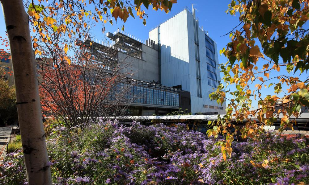 The High Line Park New York and the Whitney Museum of American Art