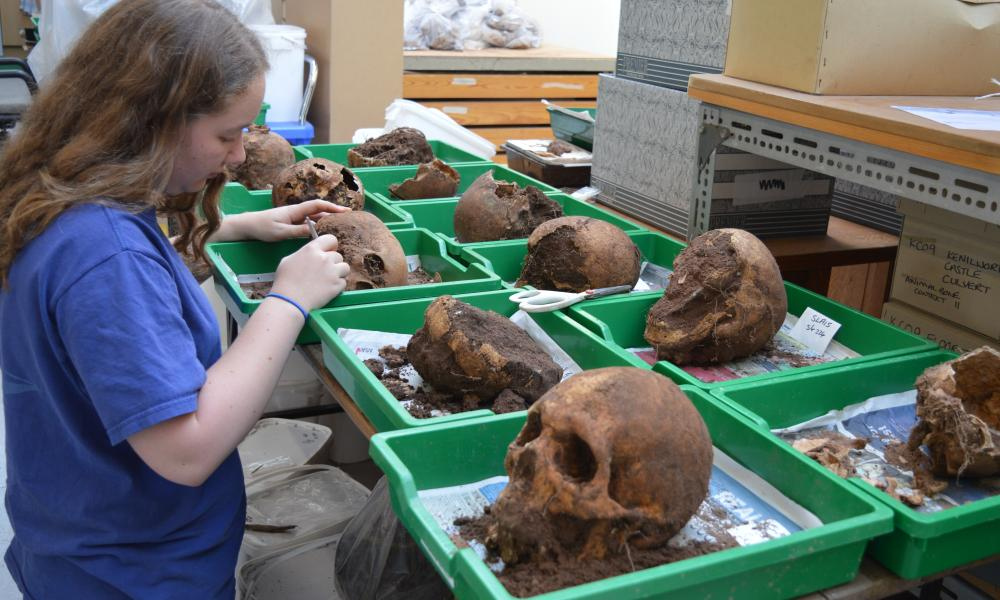 Skulls are being studied by experts at Archaeology Warwickshire.