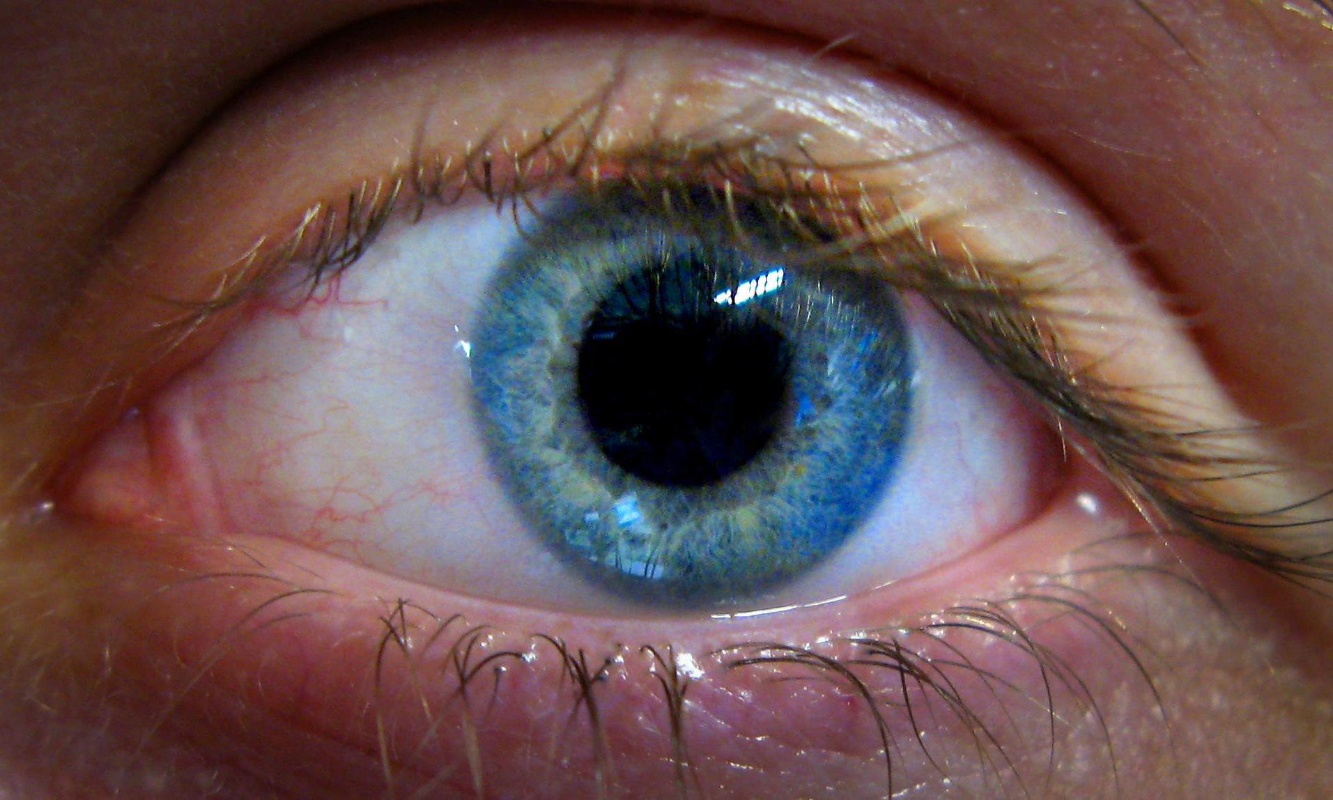 Recent Sight Treatments - Magazine cover