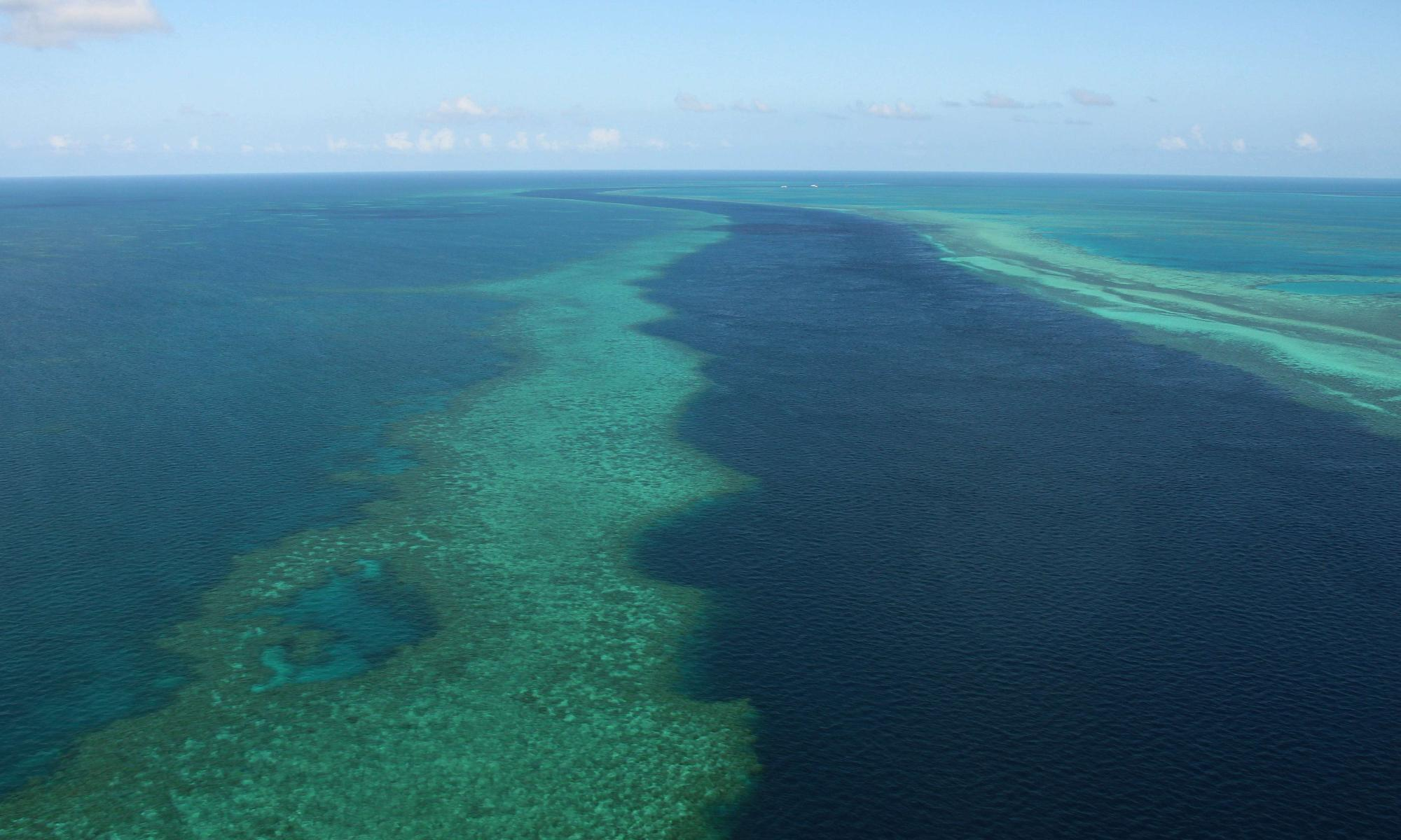 Queensland's proposed Carmichael coalmine faces legal bid over climate change | Environment | The Guardian