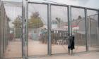 Australia up for human rights council seat despite UN official's criticism of asylum secrecy