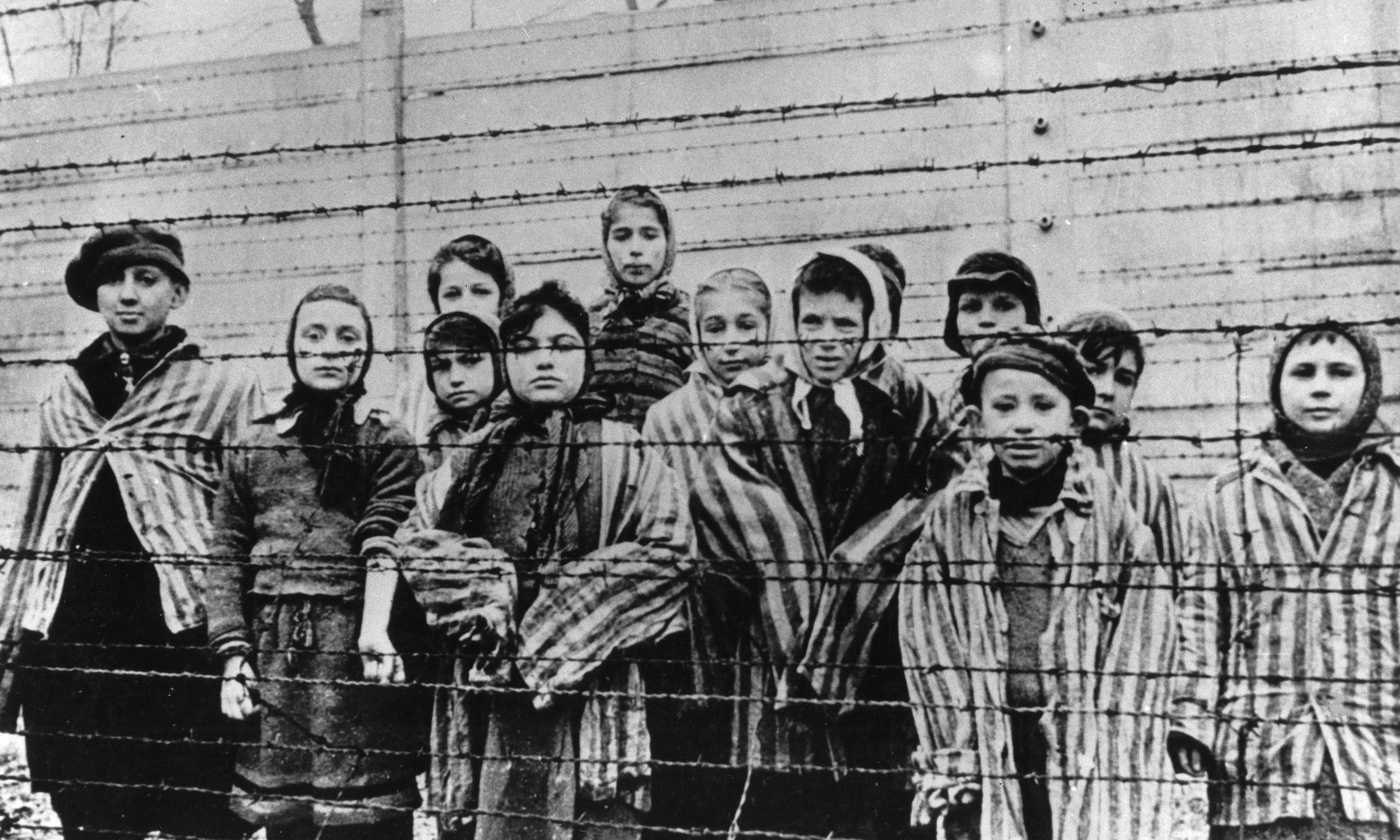 Study of Holocaust survivors finds trauma passed on to children's genes