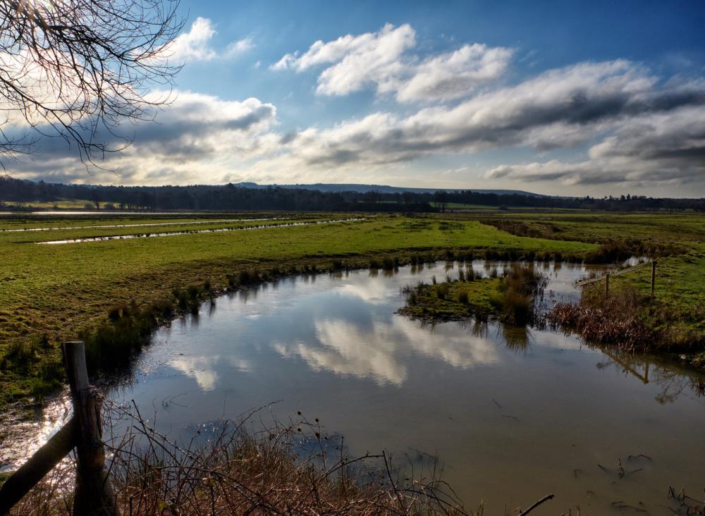 Pulborough Brooks RSPB reserve in West Sussex