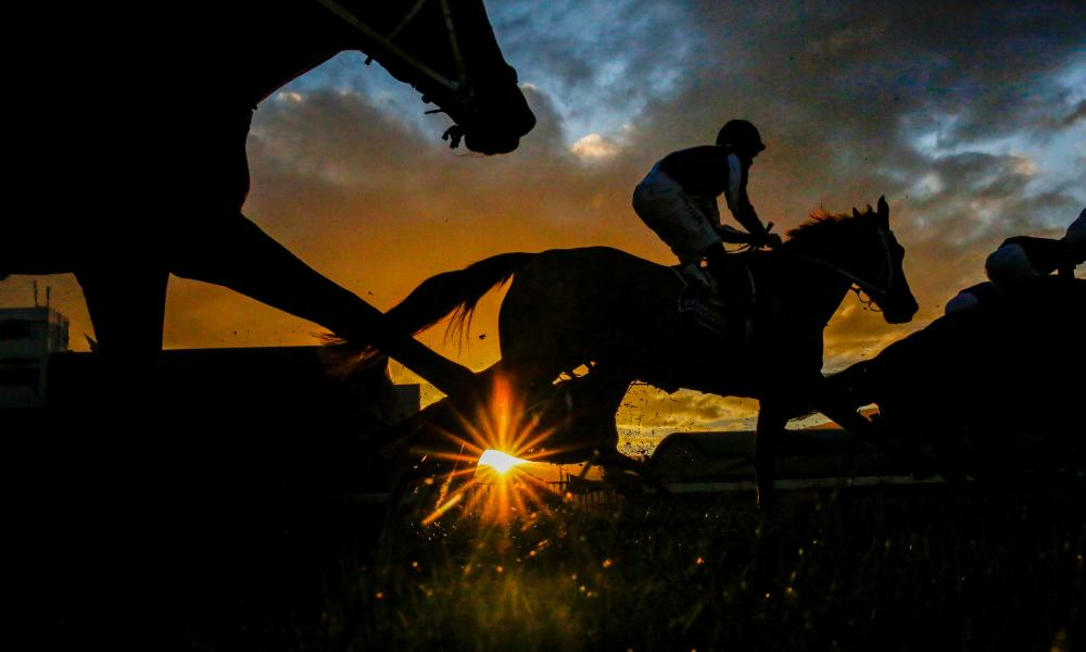 Racehorses in silhouette