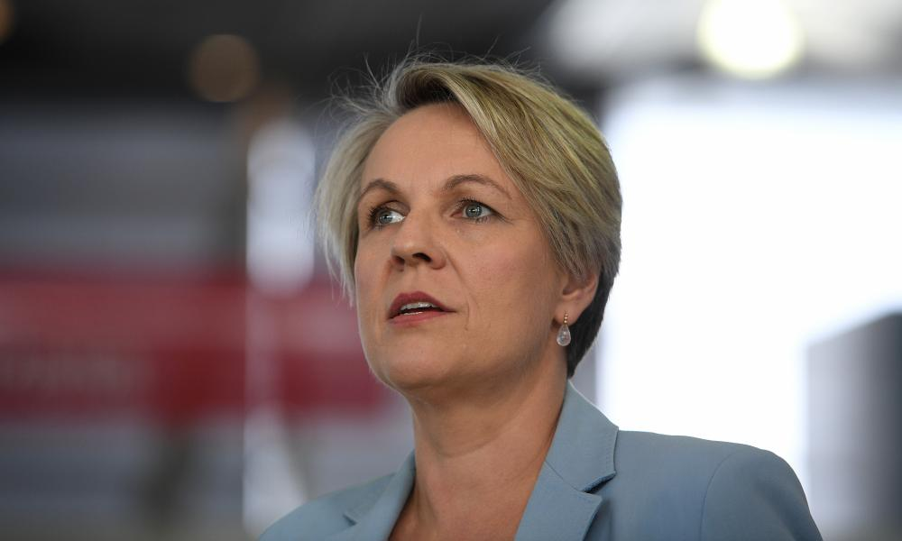 Member for Sydney and Shadow Education Minister Tanya Plibersek speaks during a protest at Sydney Domestic Airport in Sydney, Thursday, 4 June 2020.