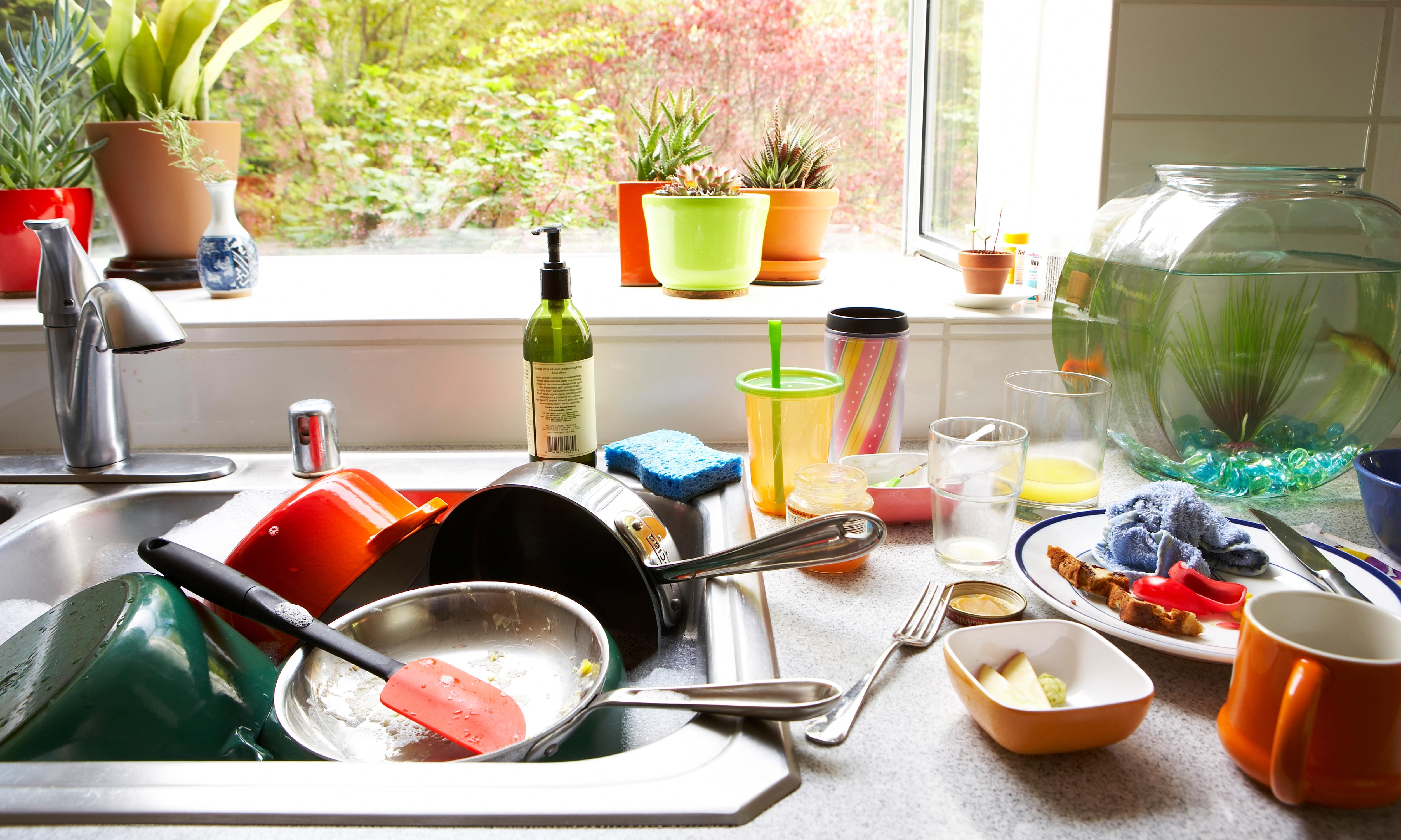 Gwyneth Paltrow won't allow it – but is it dangerous to leave dishes unwashed overnight?