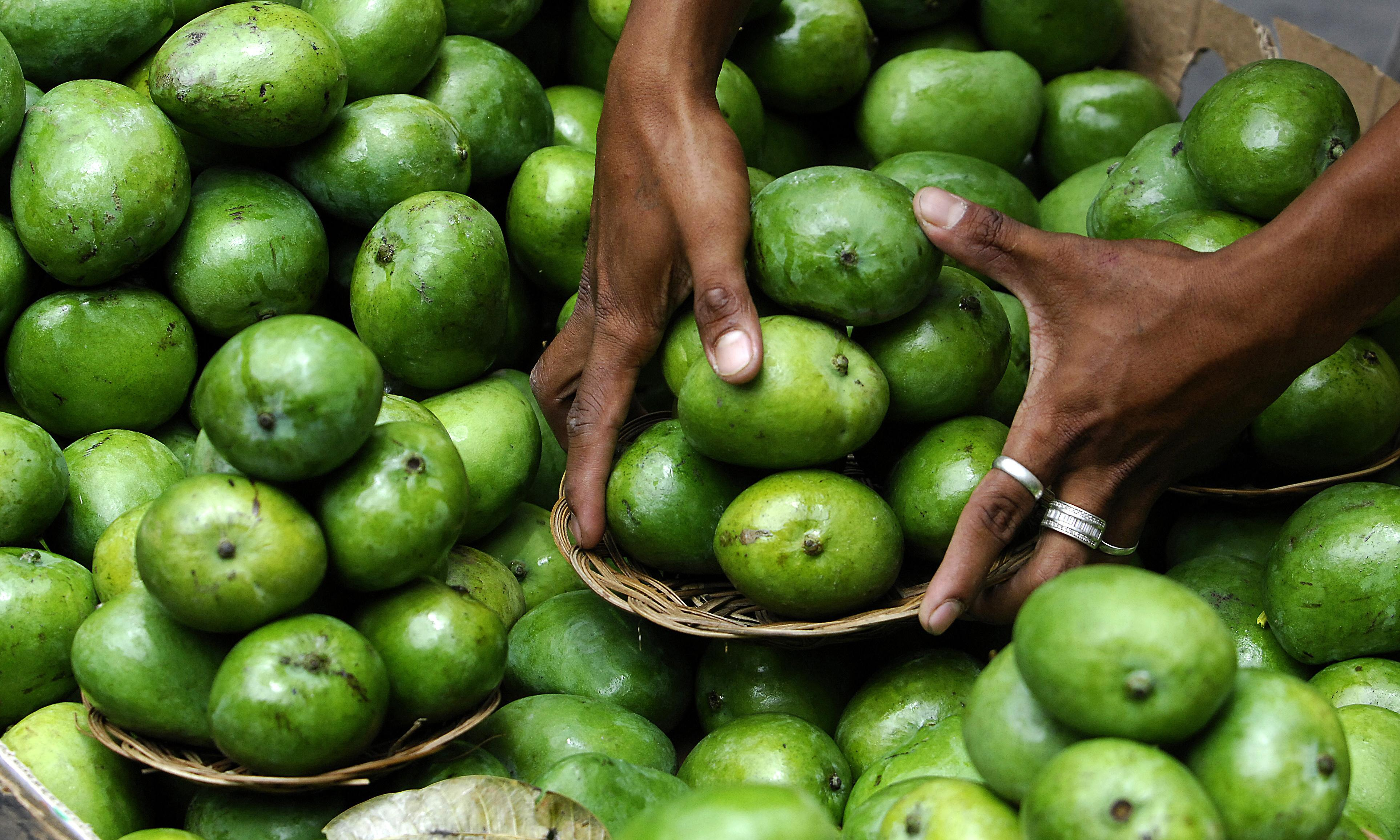 Philippines overflows with millions of mangoes as El Niño takes effect