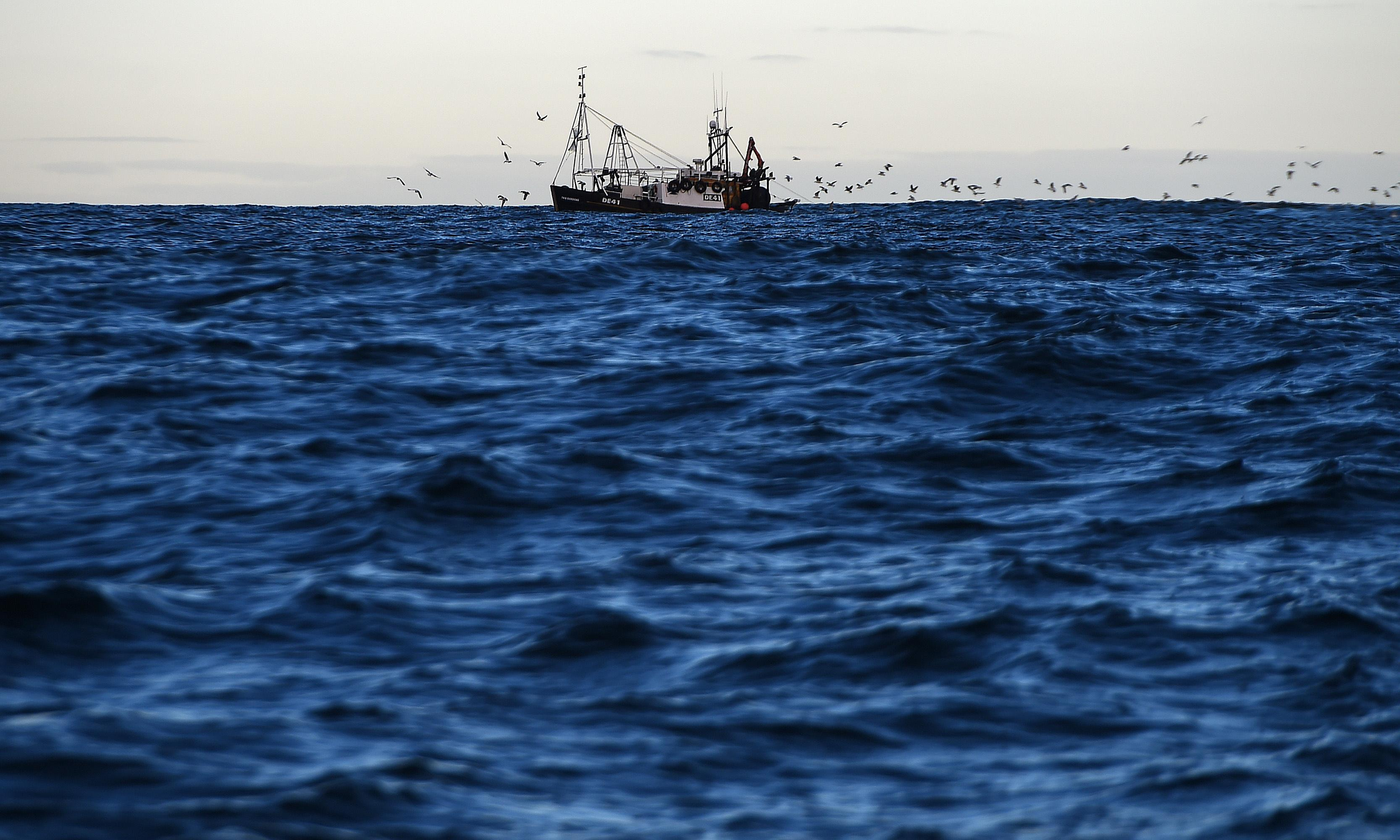 Where did all the cod go? Fishing crisis in the North Sea