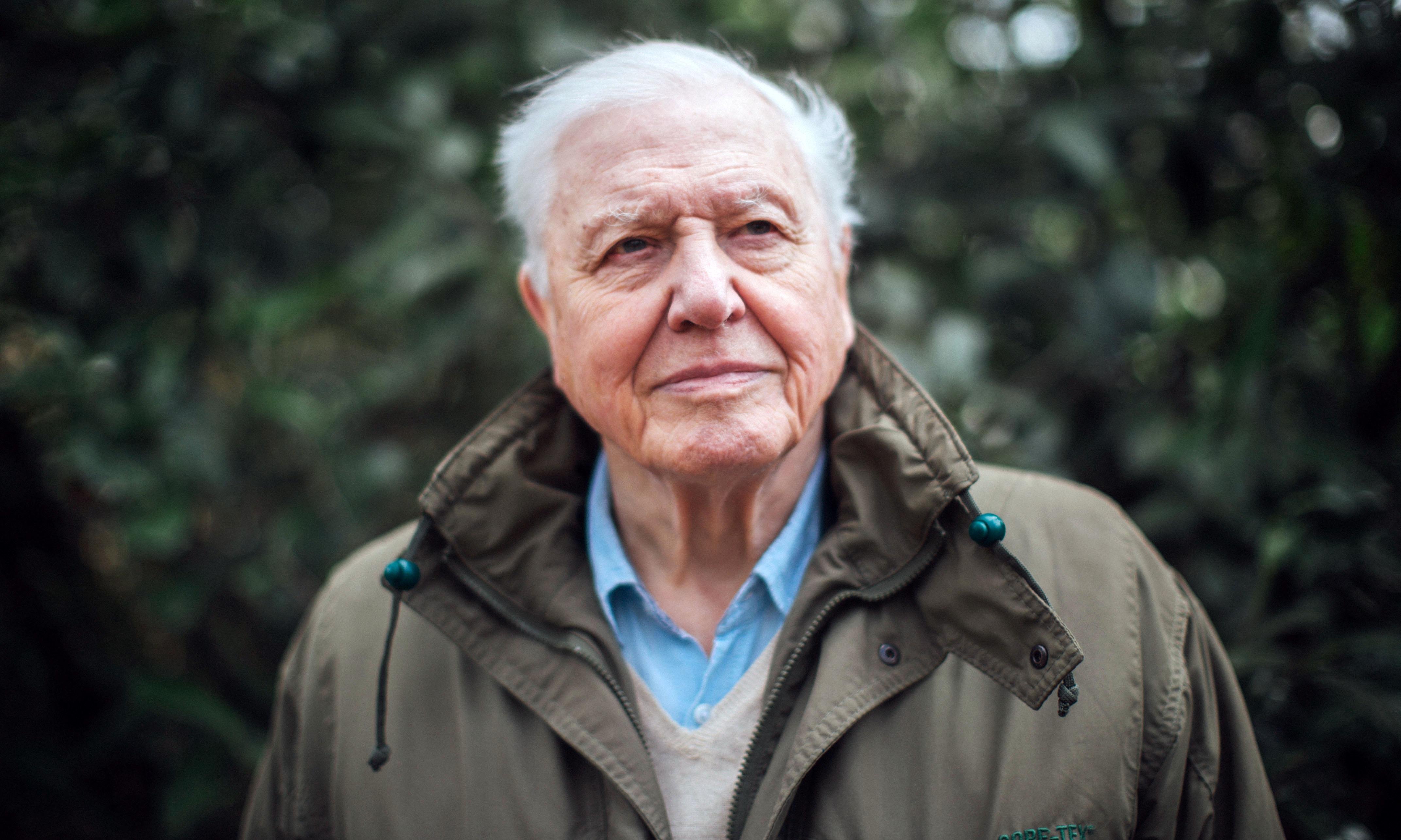 TV tonight: can David Attenborough save the planet?