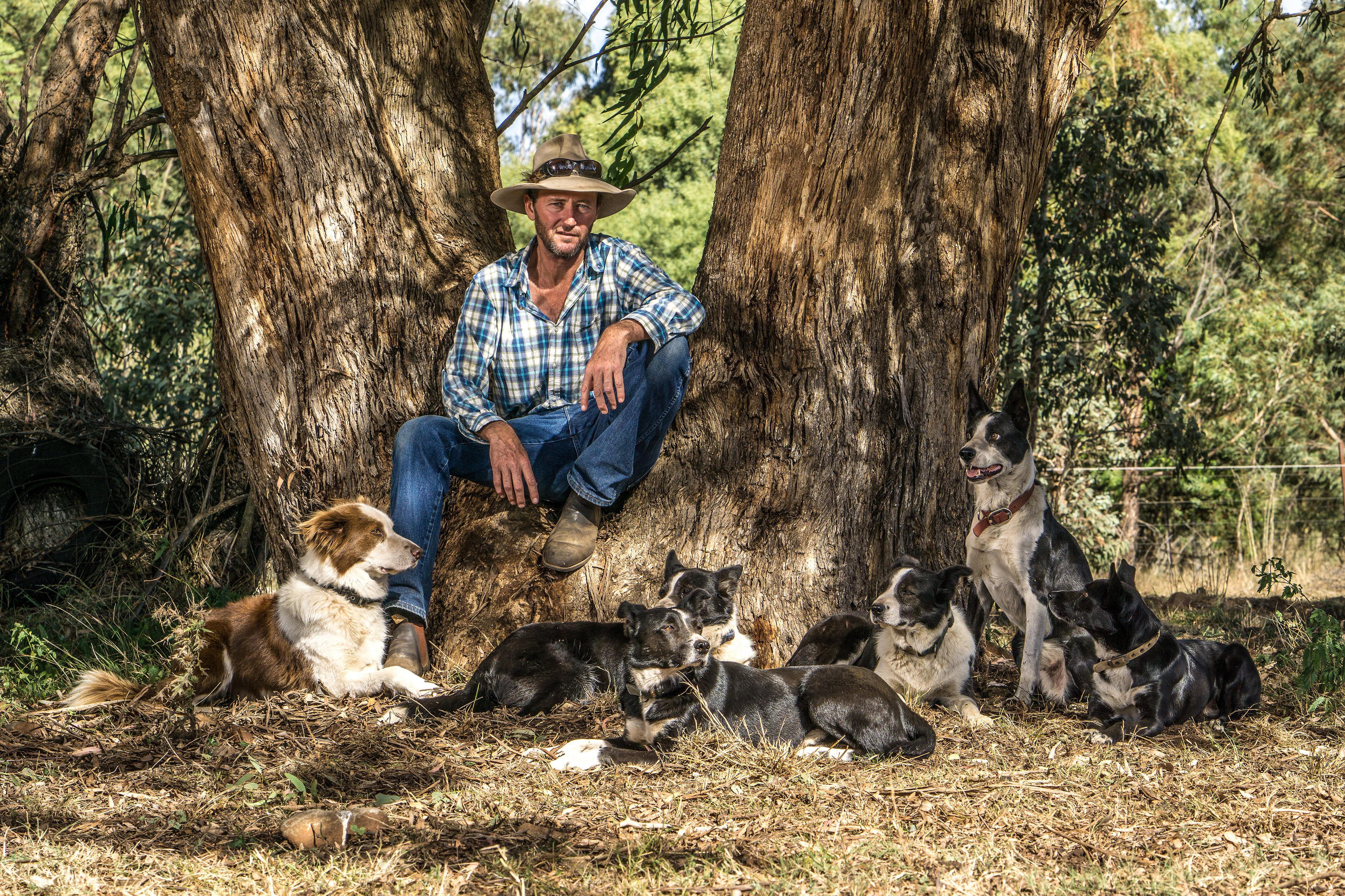 BackTrack boys: the jackaroo and his dogs giving at-risk kids a second chance