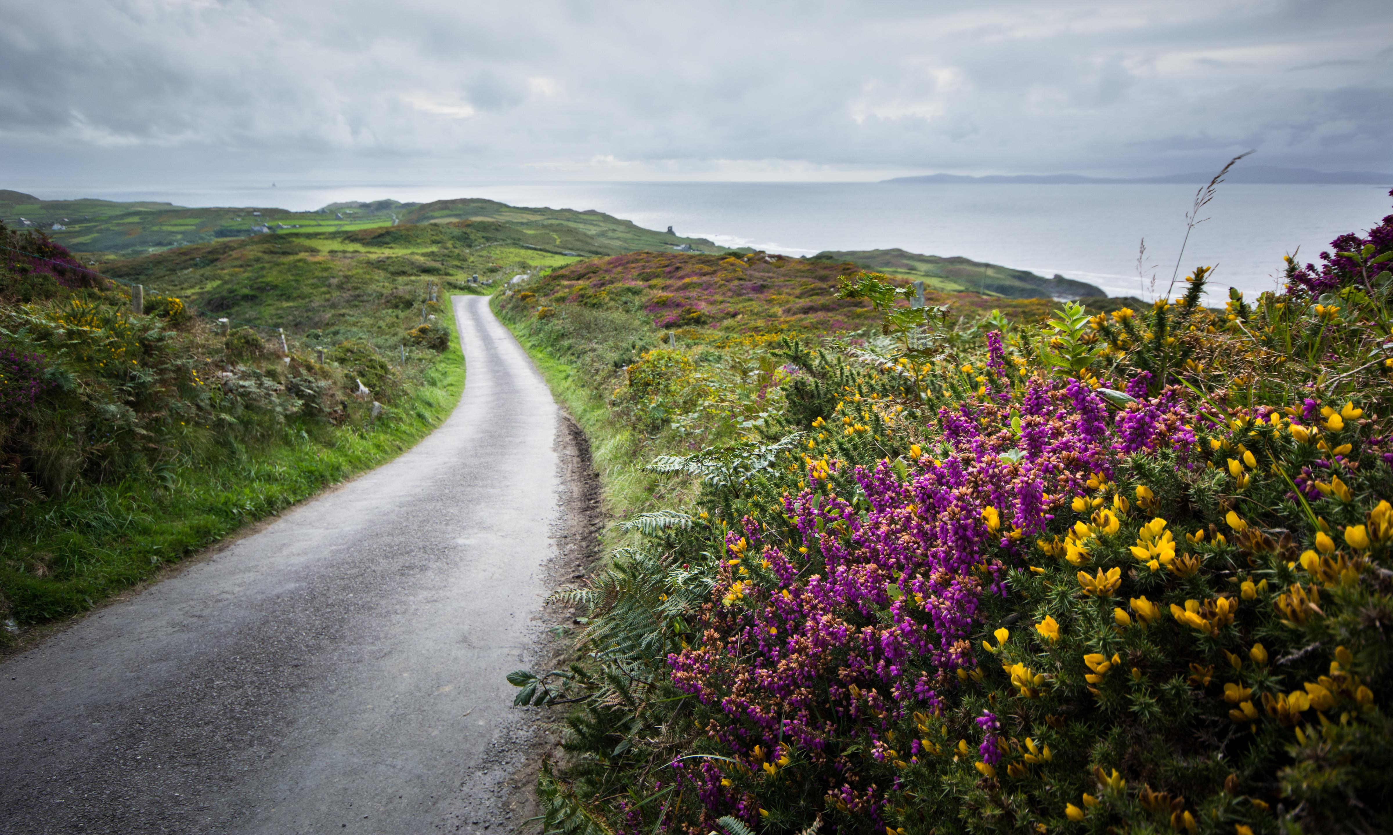 'Instant calm to the soul': the magic of Cape Clear, Ireland