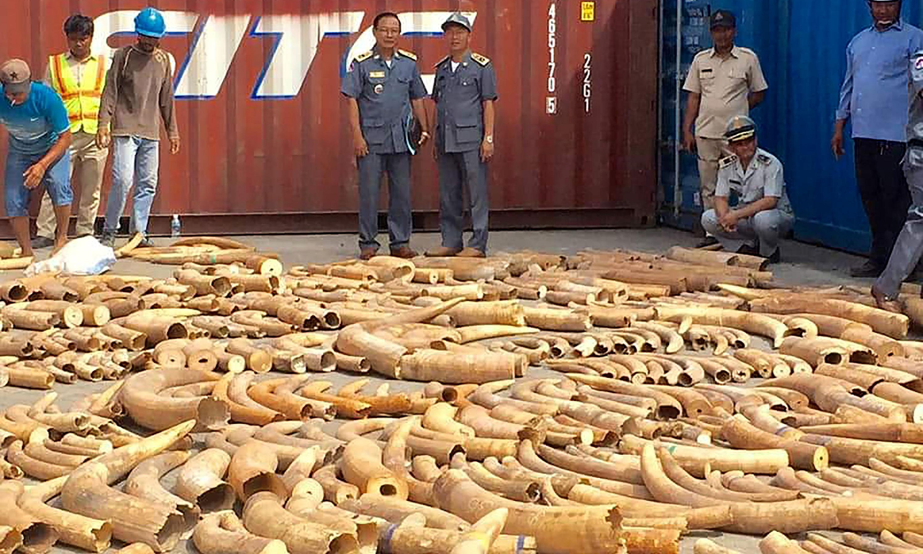 Cambodia seizes record three-tonne haul of African ivory