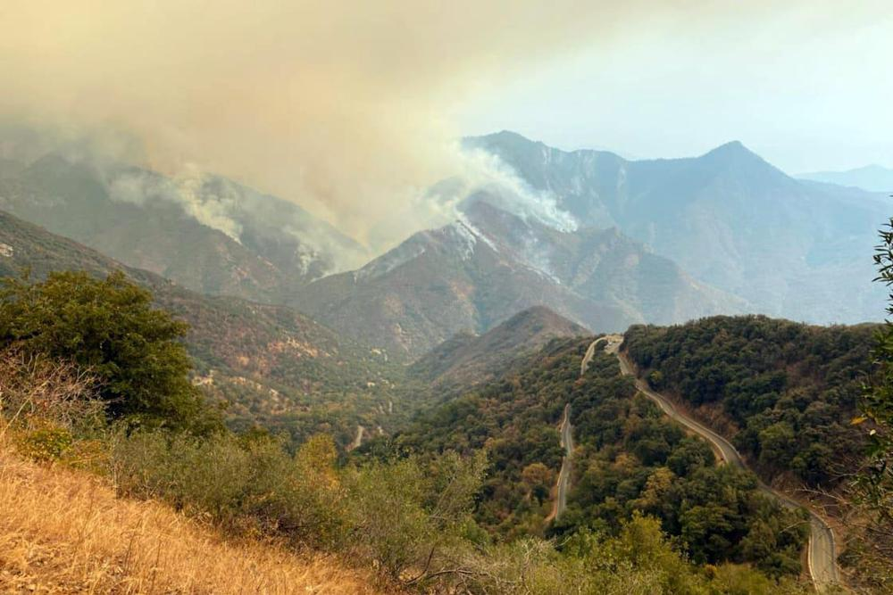 Smoke rises from the KNP Complex fire in Sequoia national park in California.