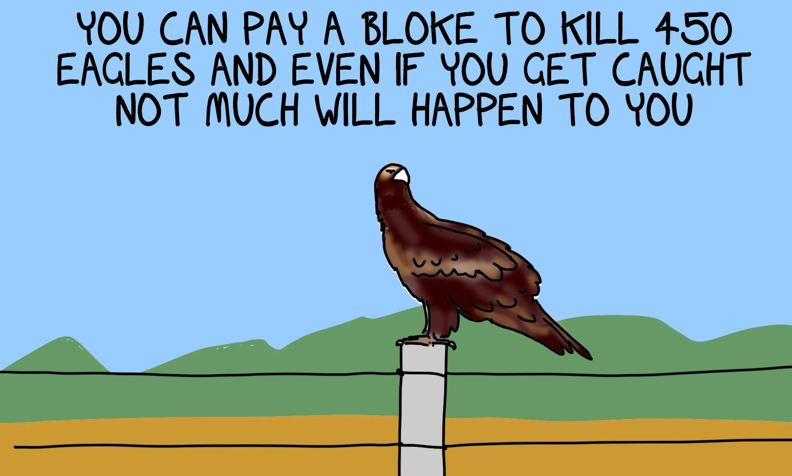 We get it, farming is hard, but if you can't make a go of it without killing 420 wedge-tailed eagles ...