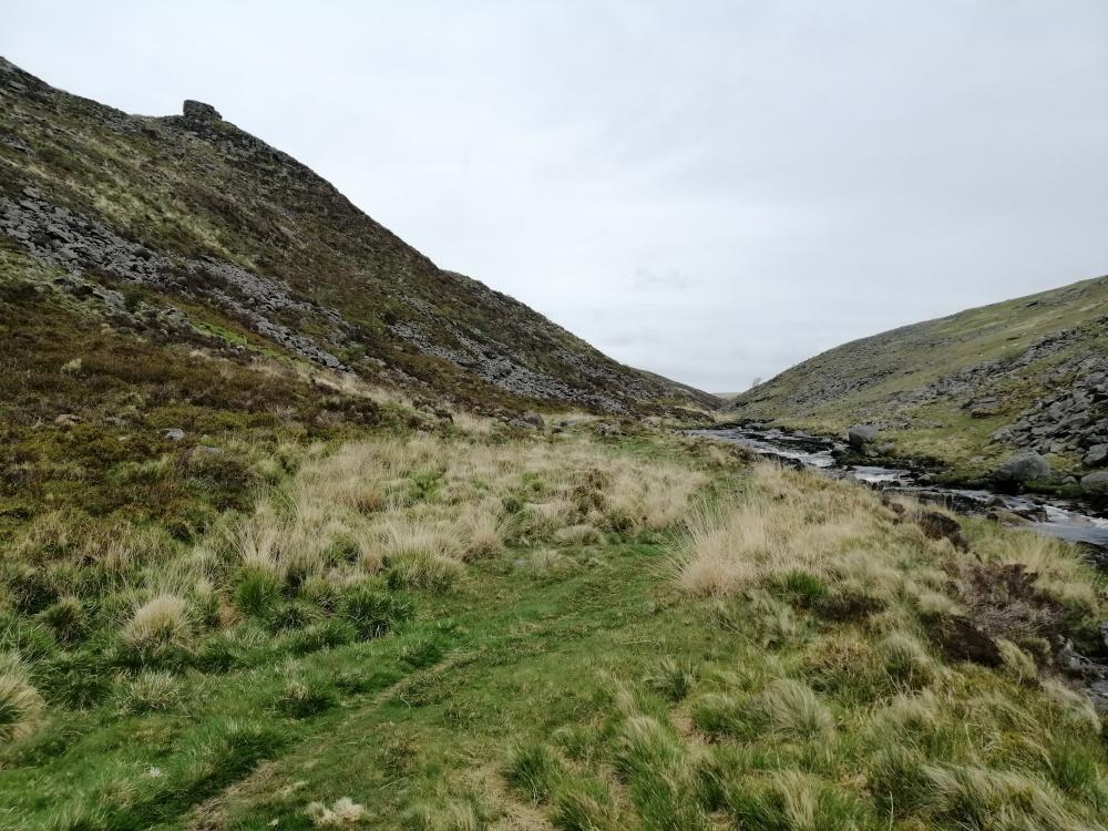 Ring ouzels have regularly nested amid the heather and bilberry in this rocky west Dartmoor valley.