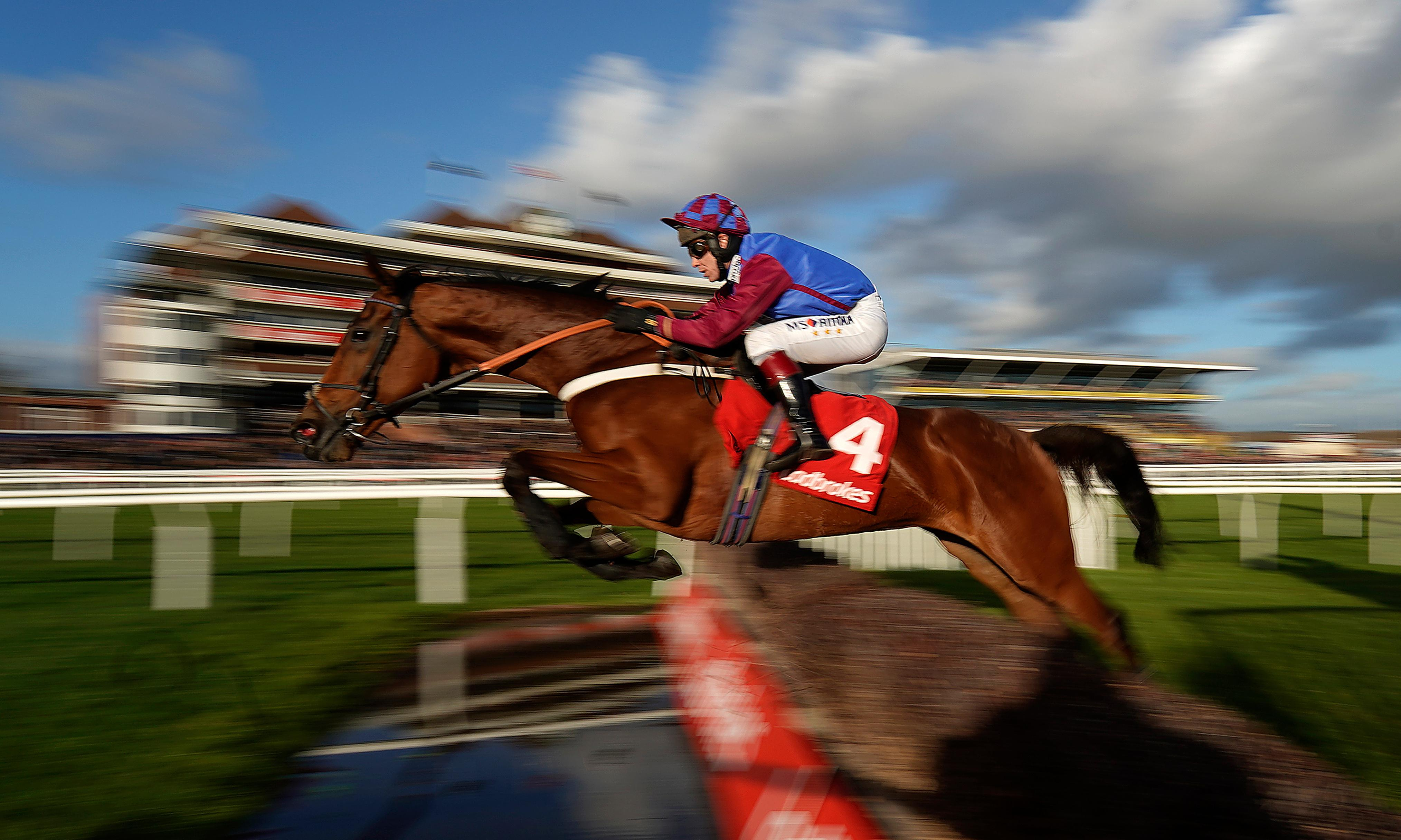 Talking Horses: Bank on Sizing Tennessee in the Ladbrokes Trophy