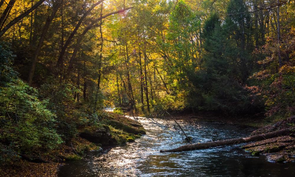 Evening light on the Gunpowder river in Gunpowder Falls state park, Maryland, US