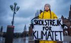 "Greta Thunberg holds a placard reading ""School strike for the climate"" during a manifestation against climate change outside the Swedish parliament in Stockholm, Sweden November 30, 2018."