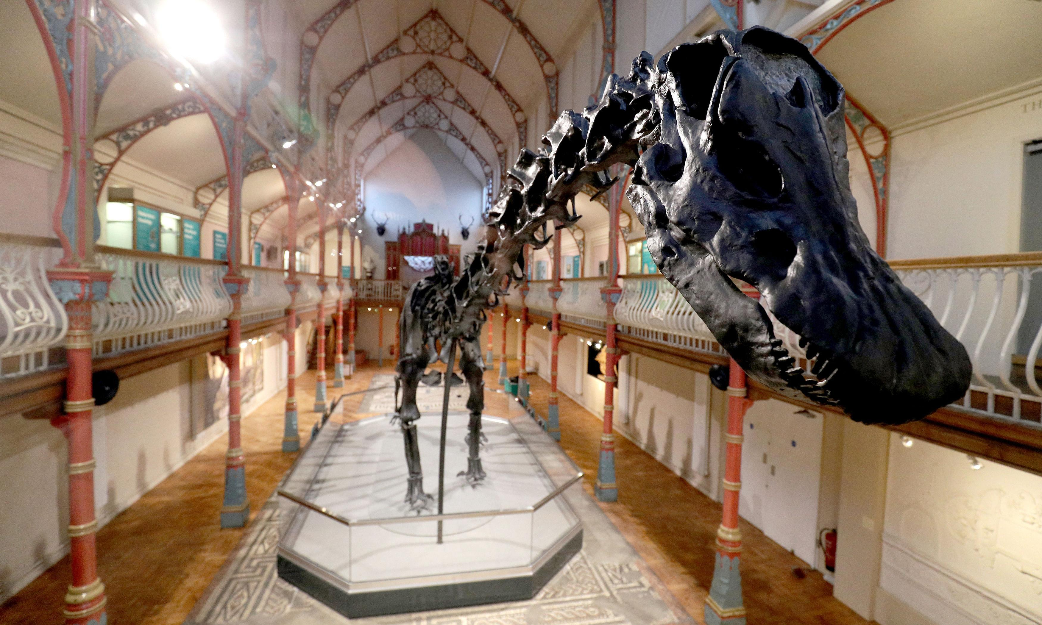 Deeply Dippy: How Britons flock to see the dinosaur on tour