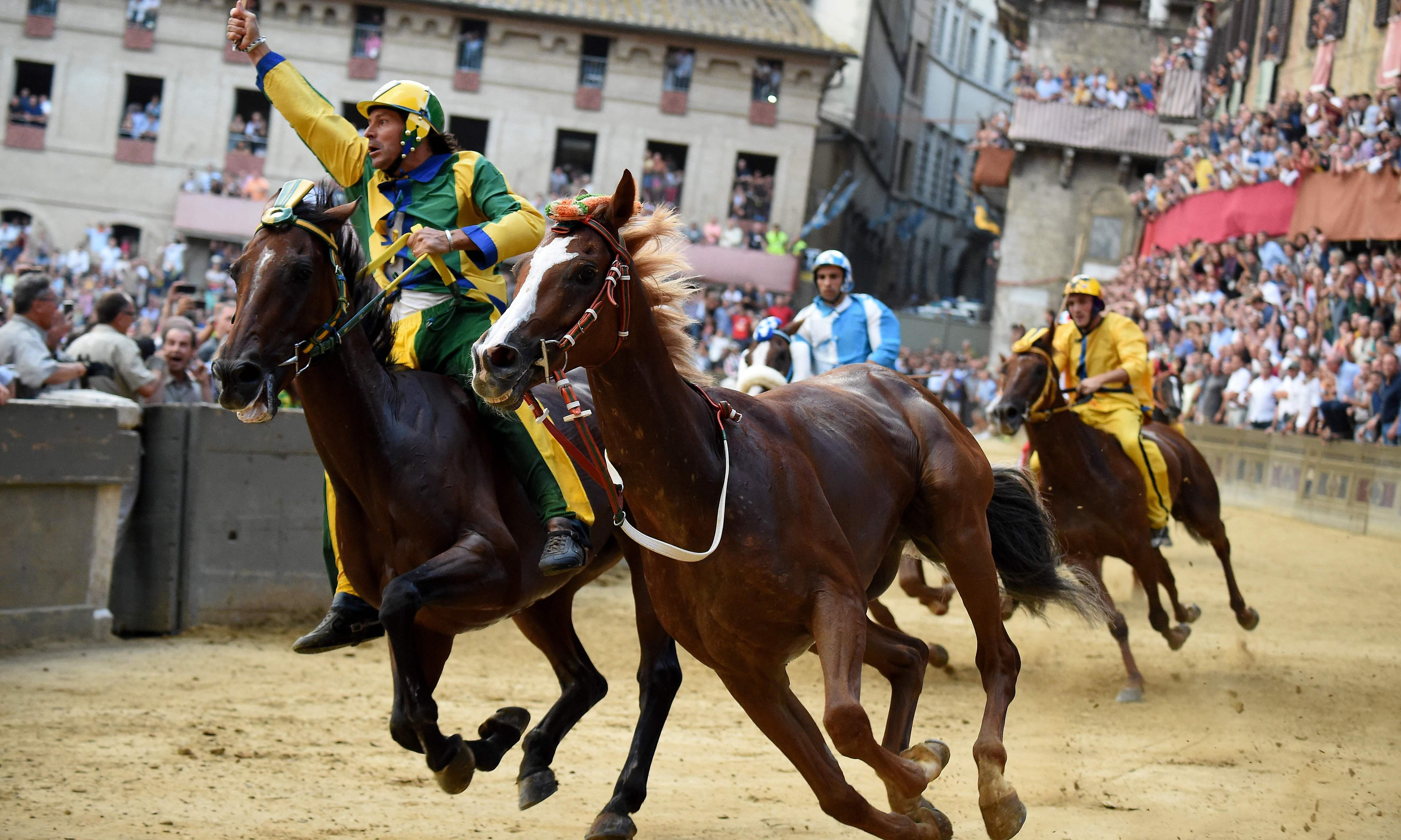 Talking Horses: how Remorex won the Palio di Siena without his jockey