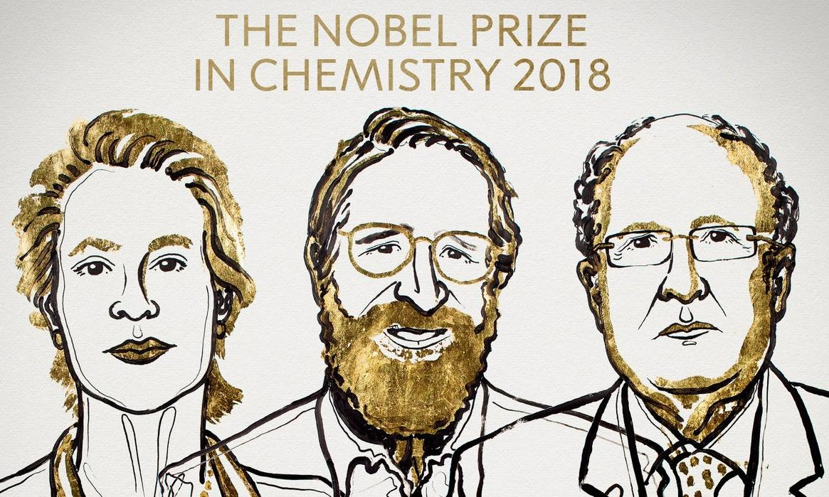 Frances H Arnold, George P Smith and Gregory P Winter win Nobel prize in chemistry