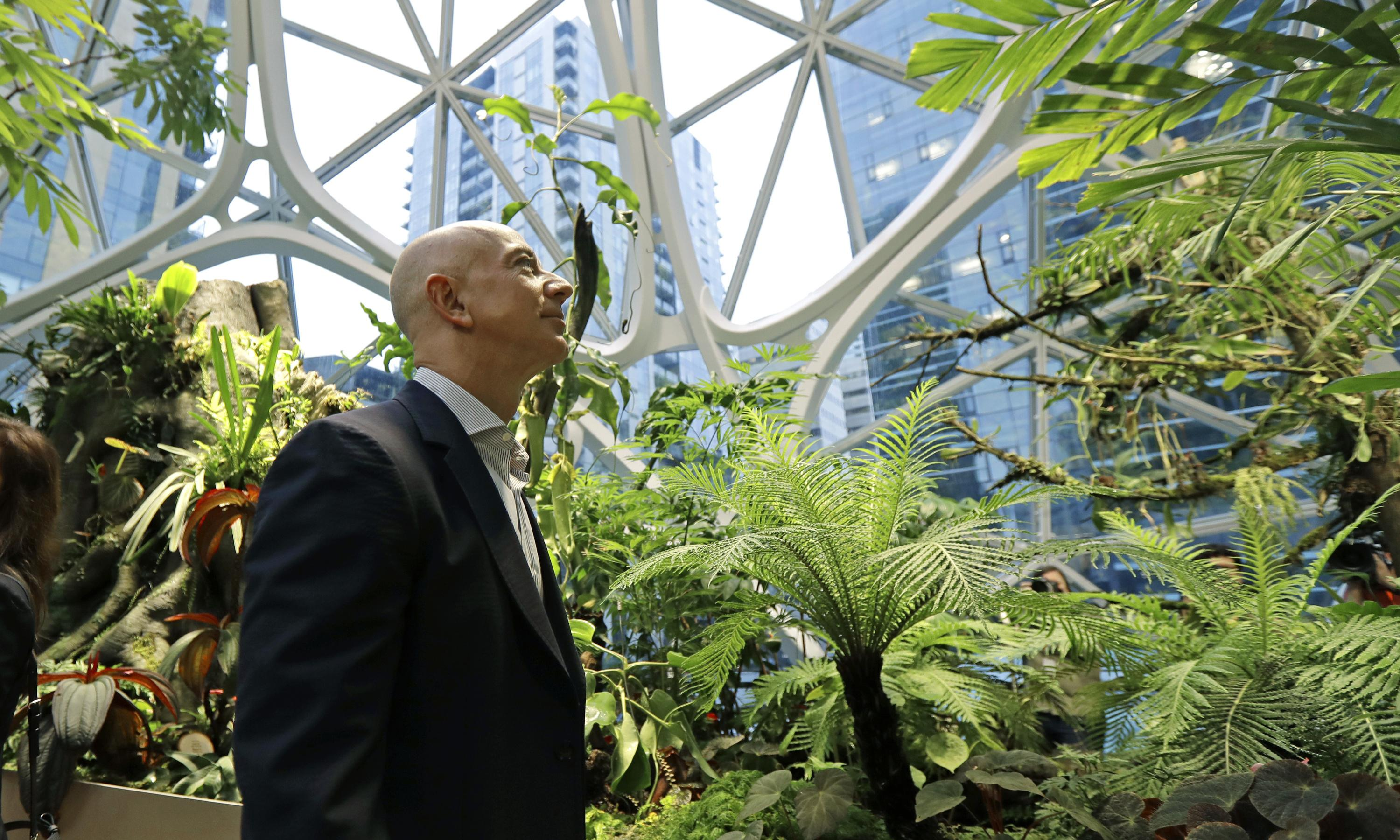 How should Jeff Bezos invest his $10bn Earth Fund?