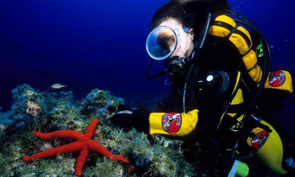 A scuba diver and sea star
