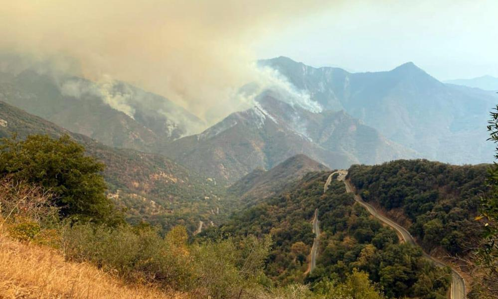 Smoke plumes rise from the Paradise fire in Sequoia national park in California.