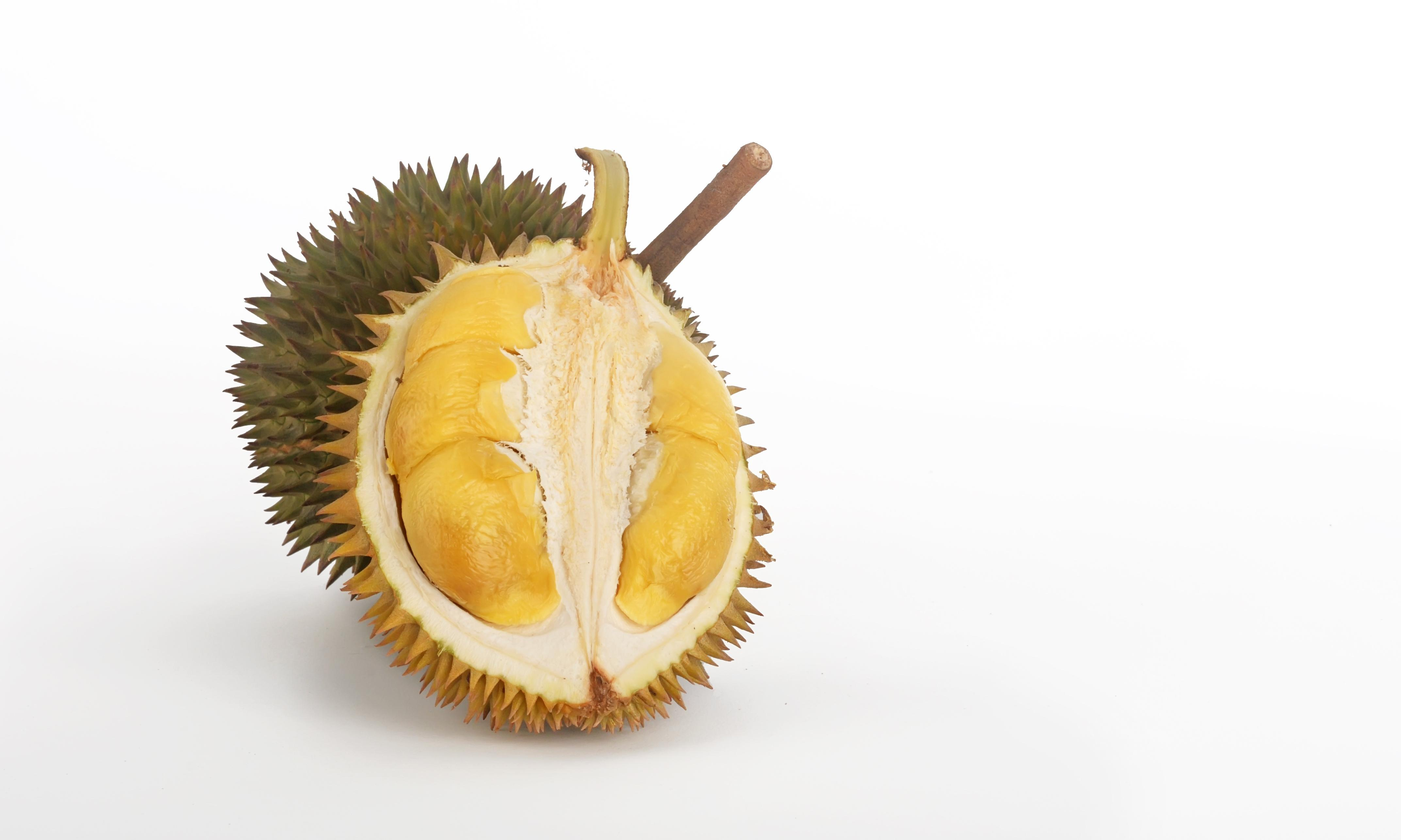 Library stink: smell of durian prompts evacuation at University of Canberra