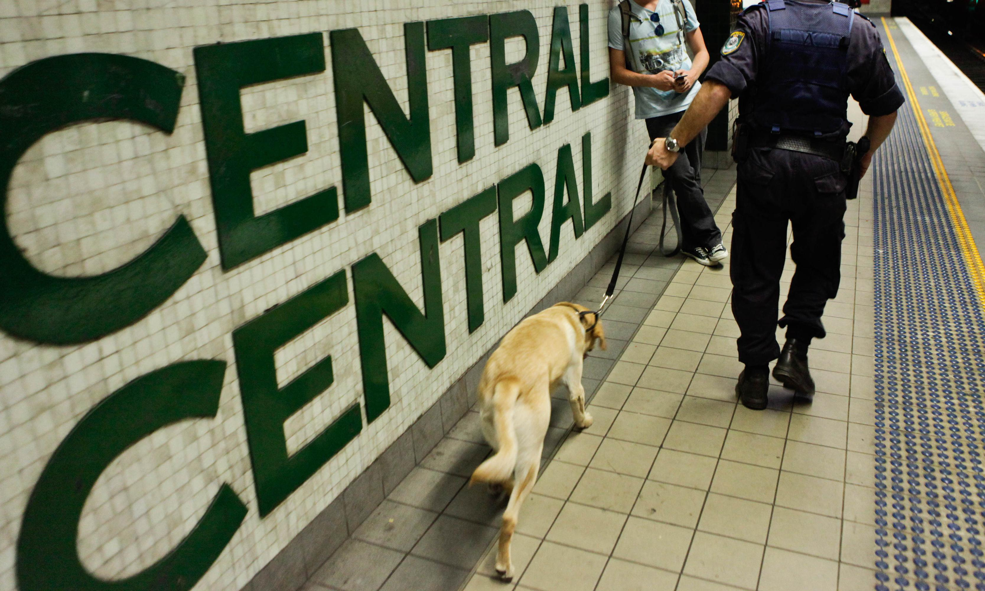 'Extraordinary rise' in strip-searches by NSW police fuelled by use of sniffer dogs