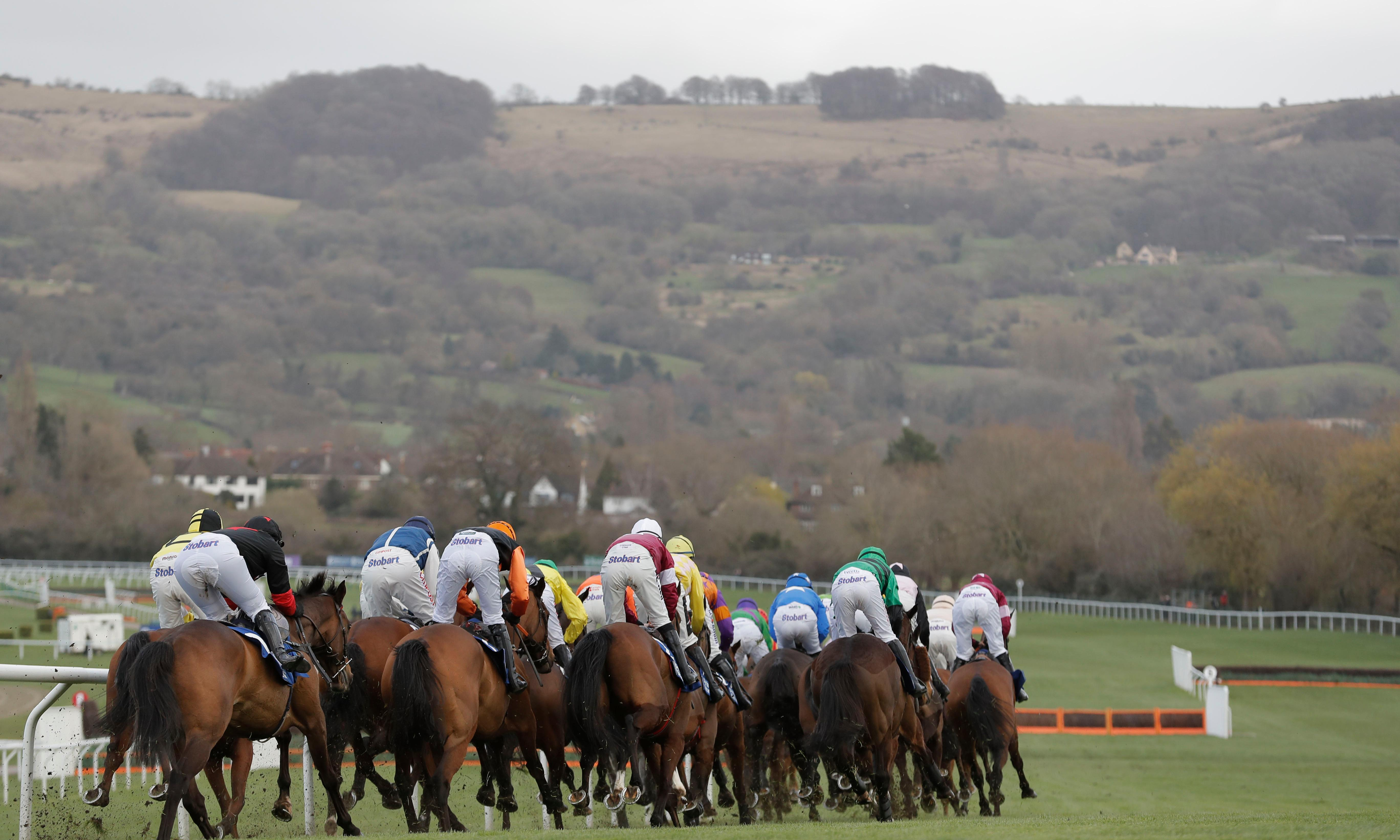 Two fatalities on Gold Cup day dampen spirits at Cheltenham Festival