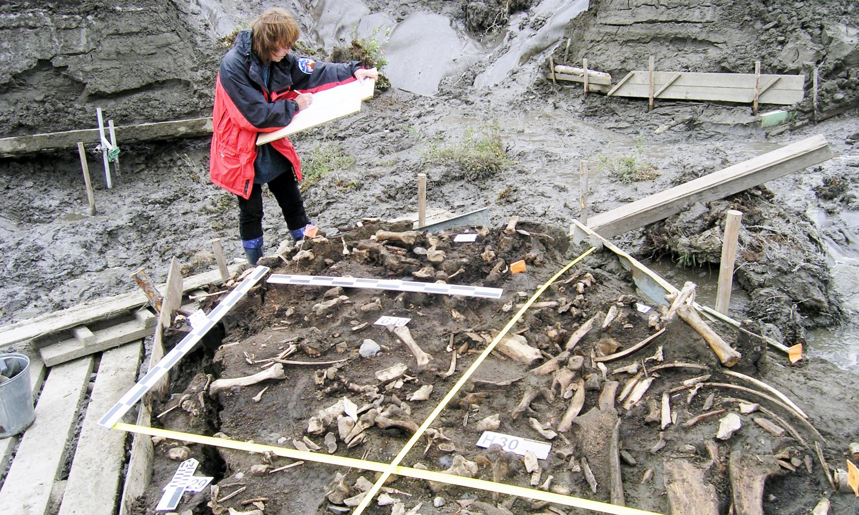 Ancient Siberia was home to previously unknown humans, say scientists