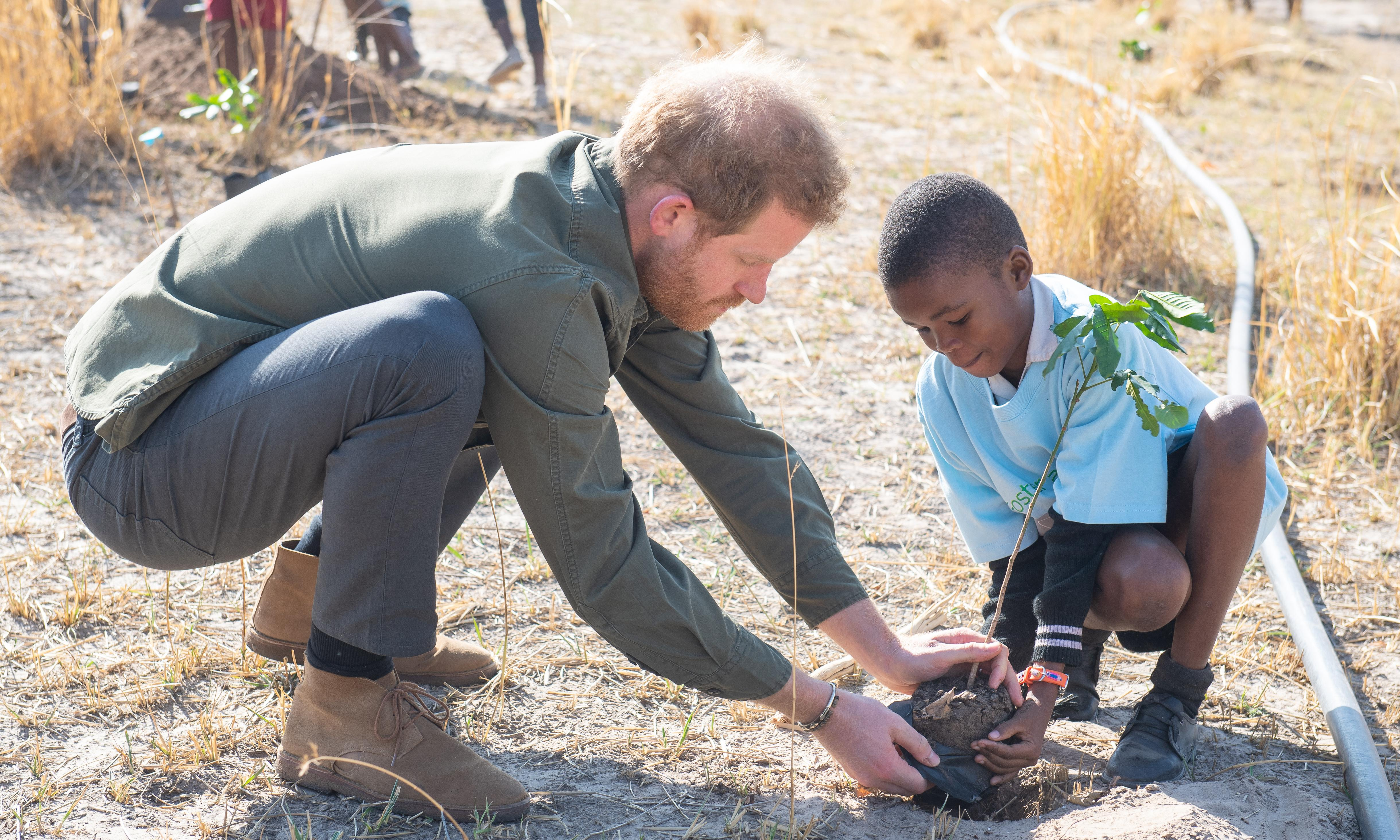 Science on climate crisis is undeniable, Prince Harry says