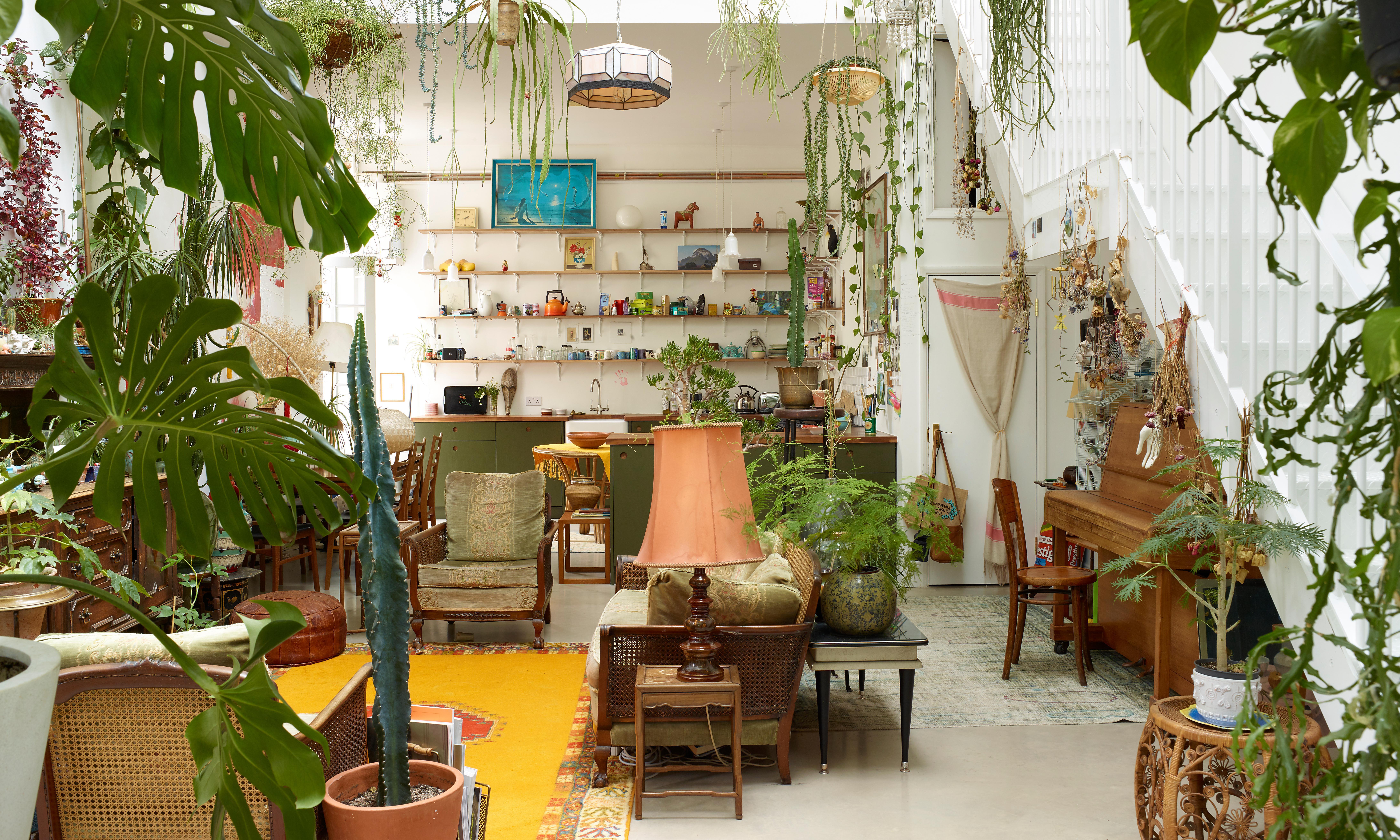 My concrete jungle home in London