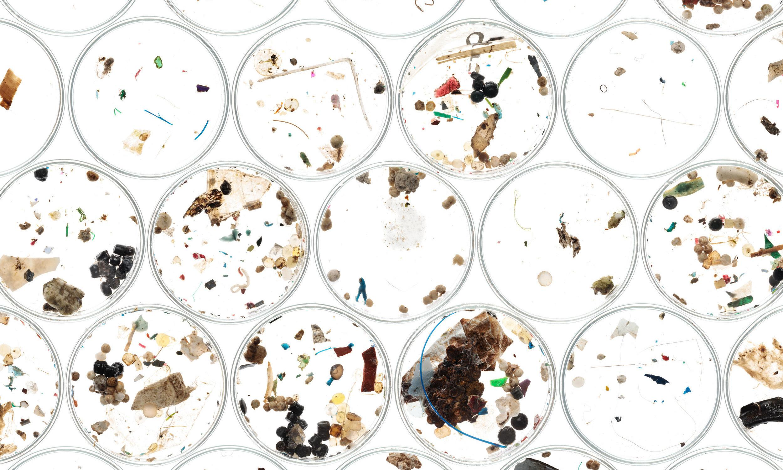 How worried should we be about microplastics?