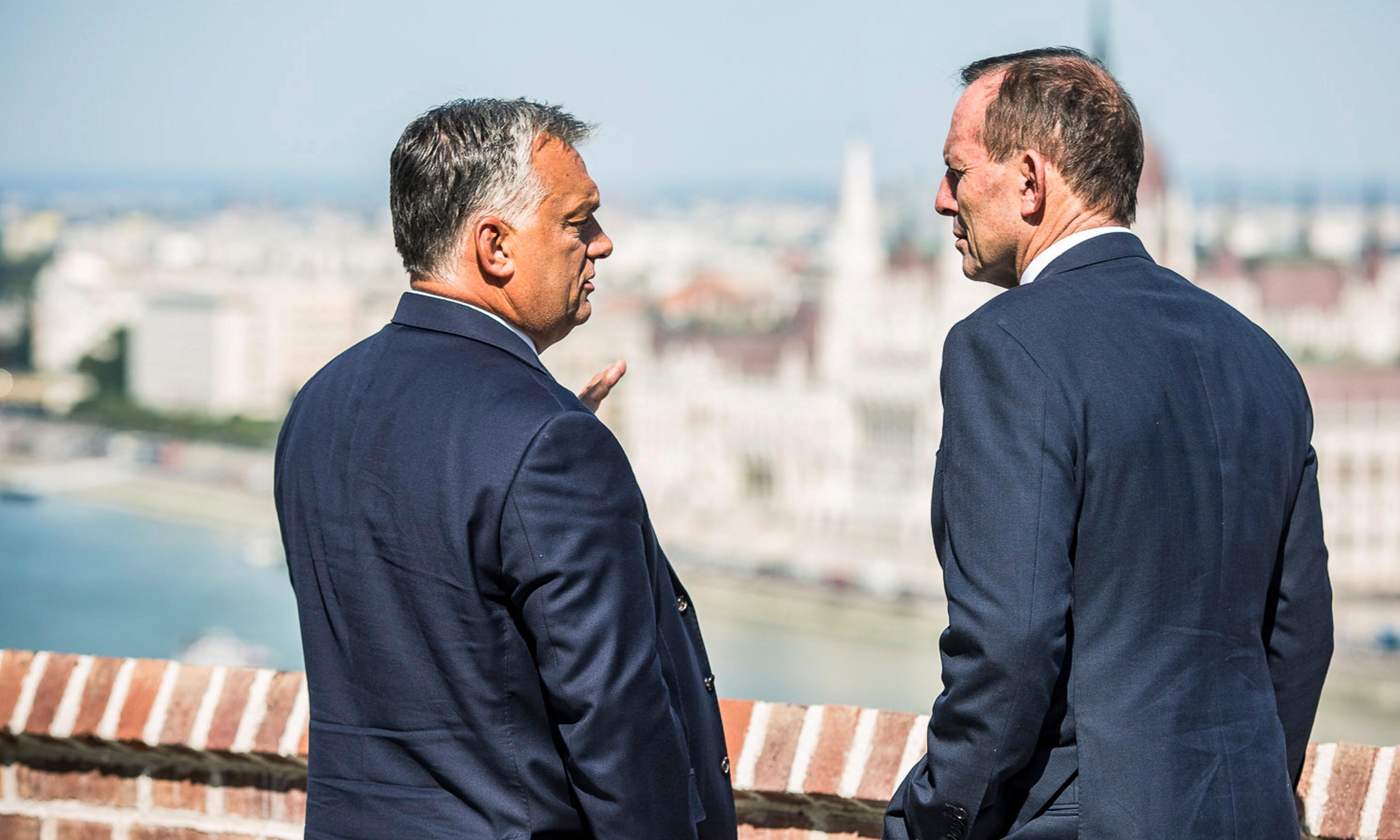 Tony Abbott attacks migrants 'swarming' to Europe while praising far-right PM of Hungary