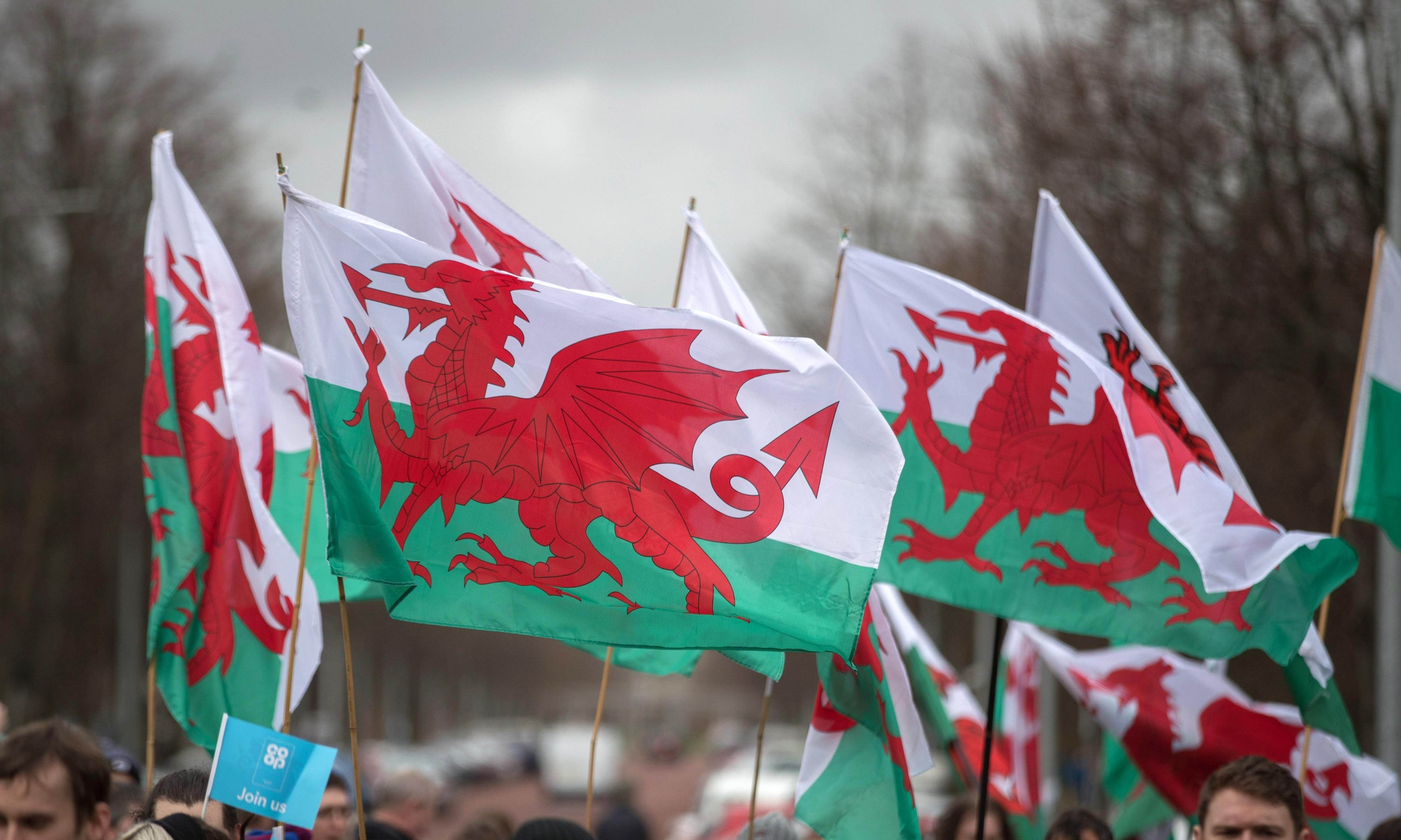 I'm Welsh and a woman of colour. Why does the census tell me that's impossible?