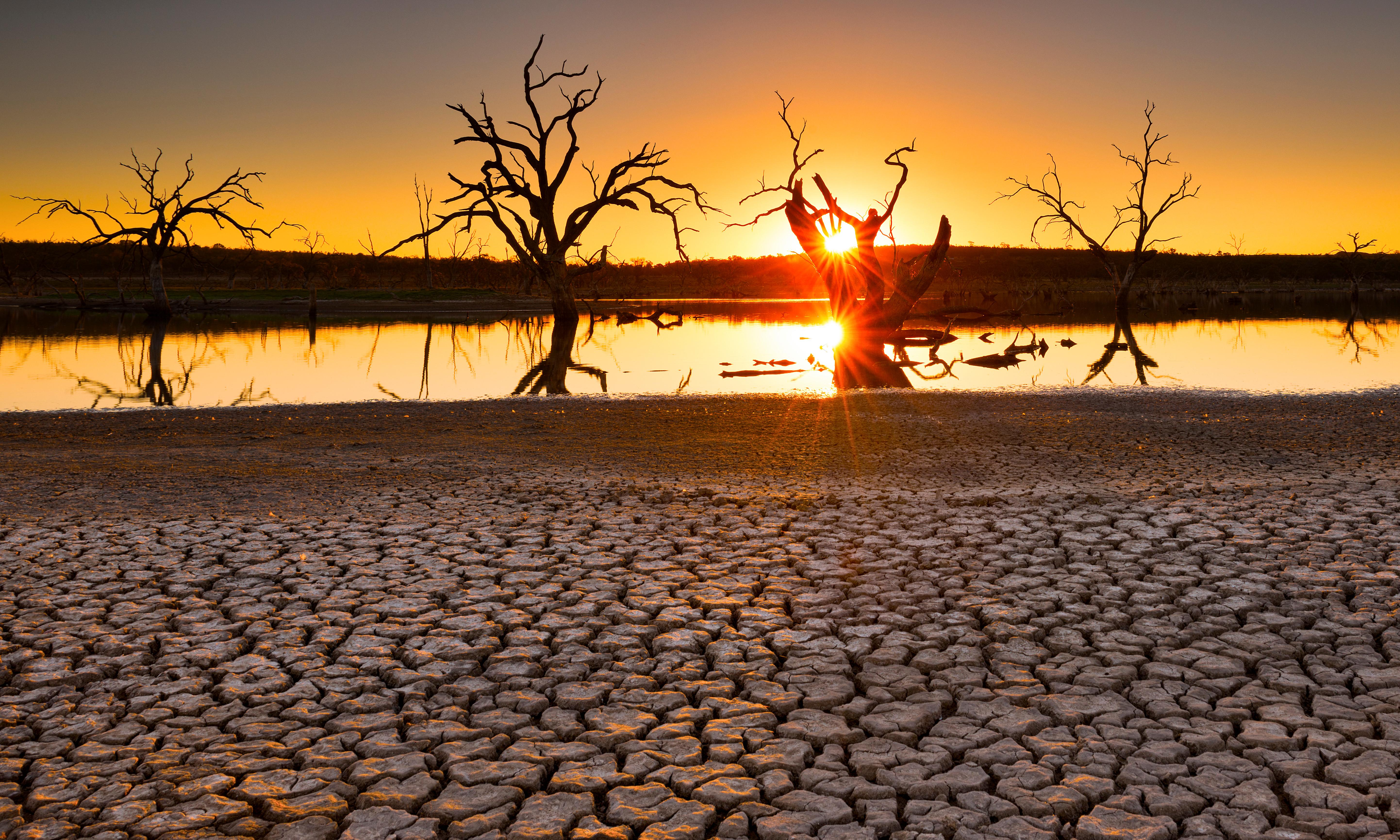 Fire warnings as temperatures to reach 40C in NSW and Queensland