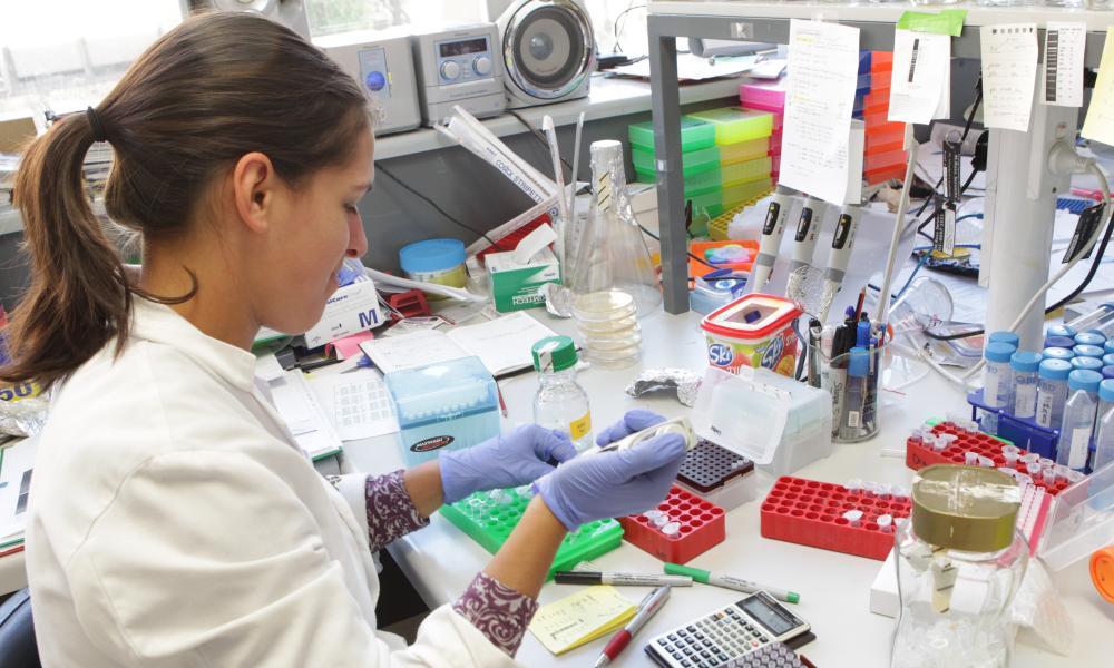 Australian scientists