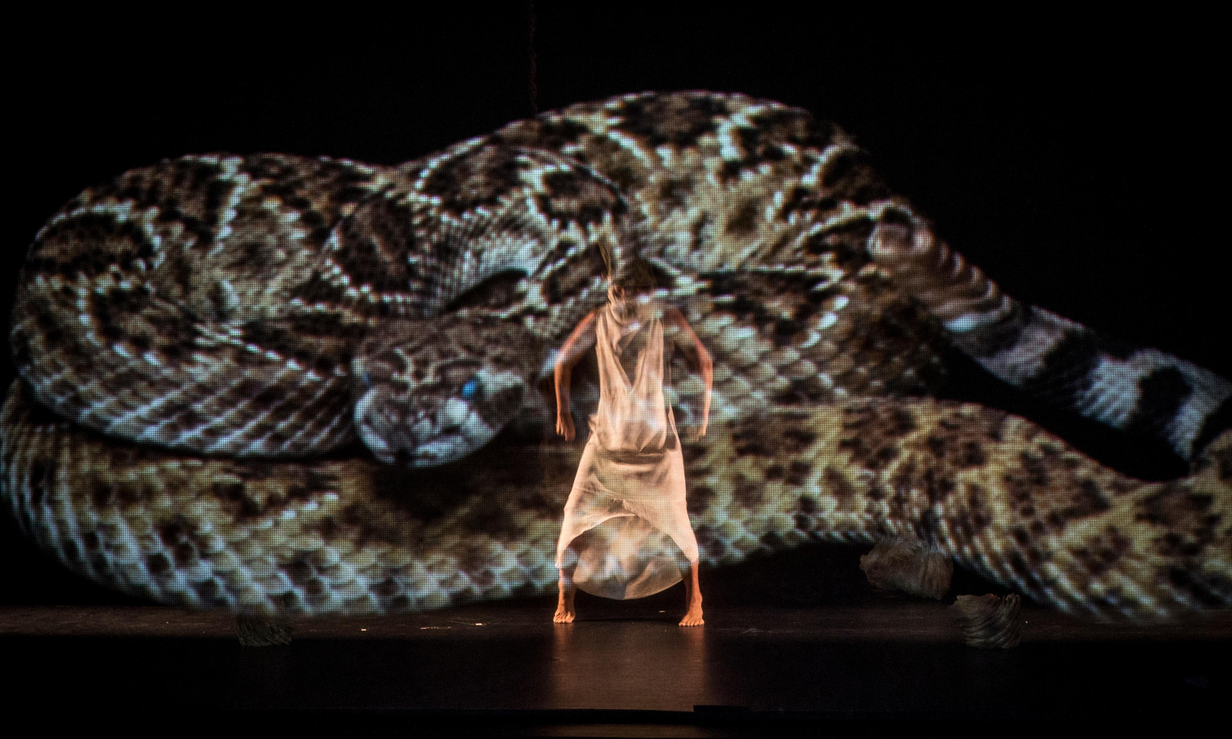 Psychedelics, dance steps and giant snakes: inside the ayahuasca show