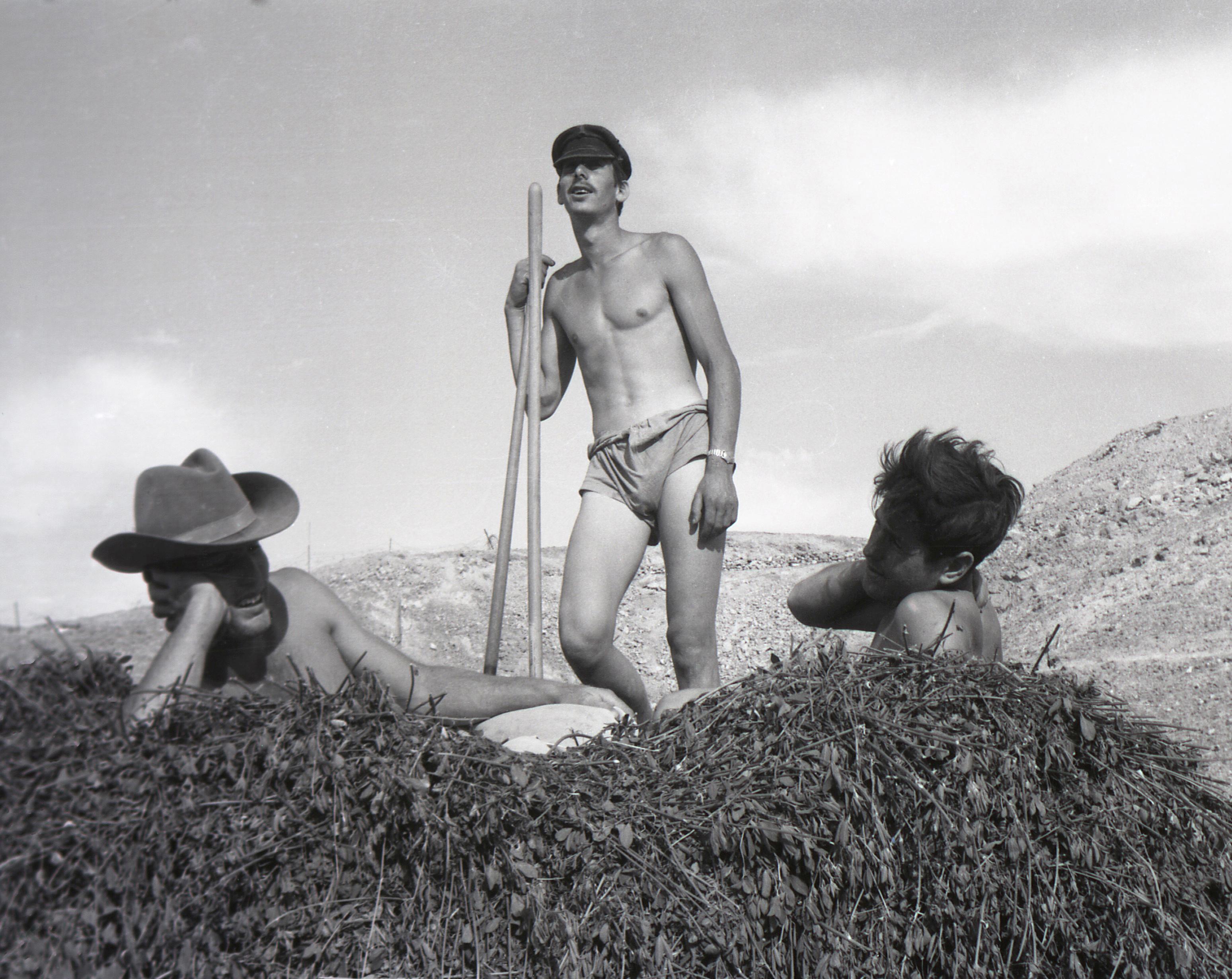 Observer archive: on a kibbutz, 26 May 1958