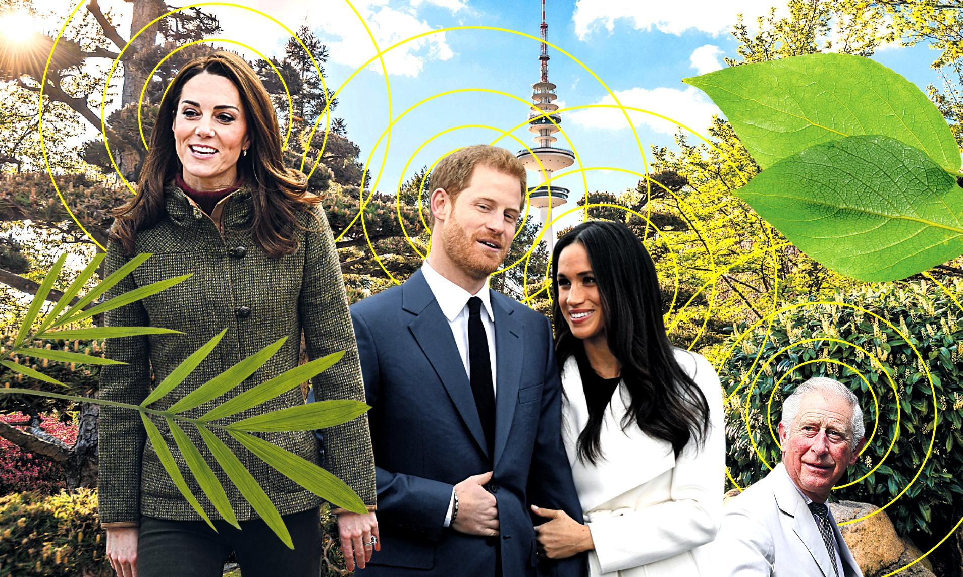Kate's forest bathing, Harry's meditating – wellness is a right royal fad