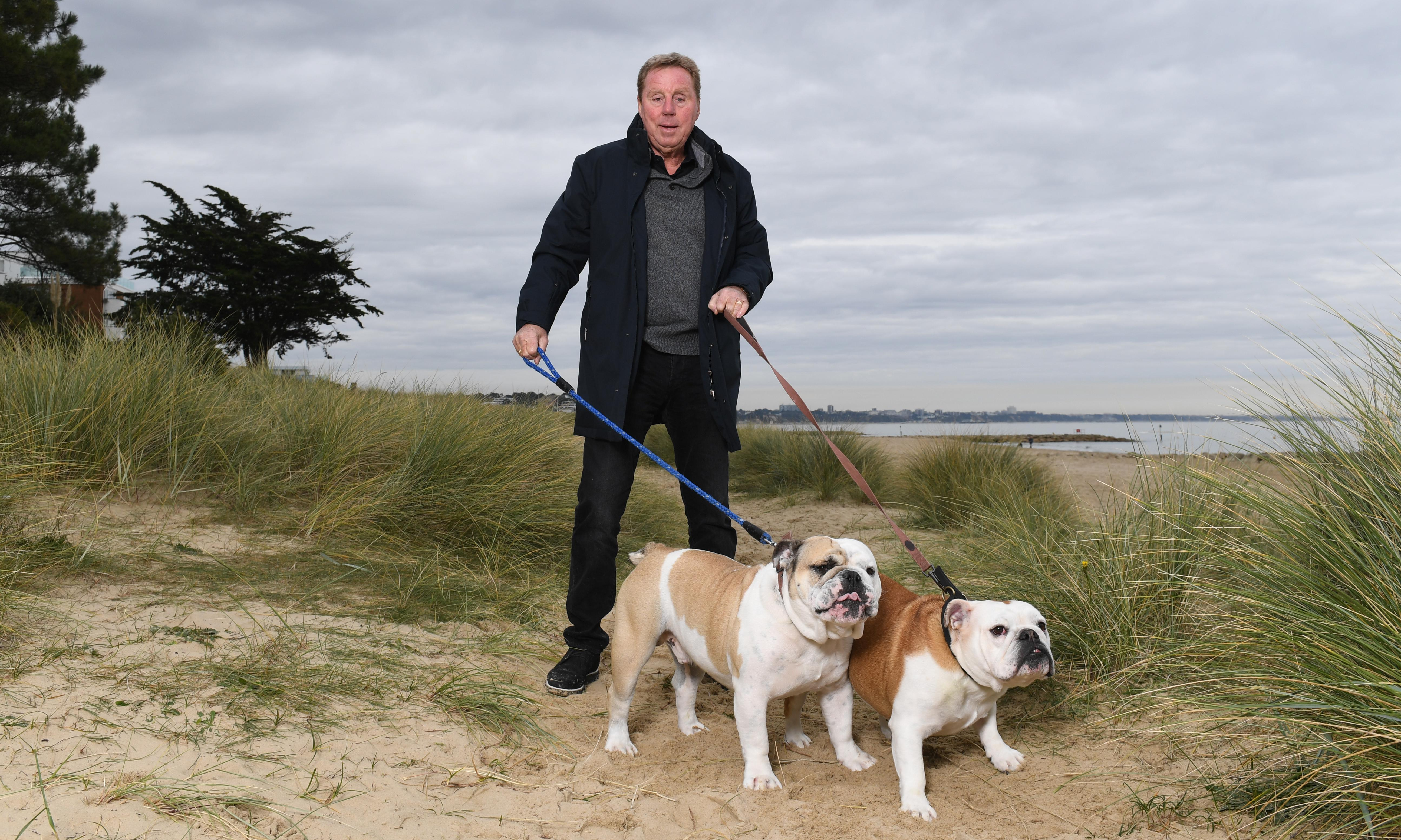 Harry Redknapp: 'Without football I'd still be on the docks'