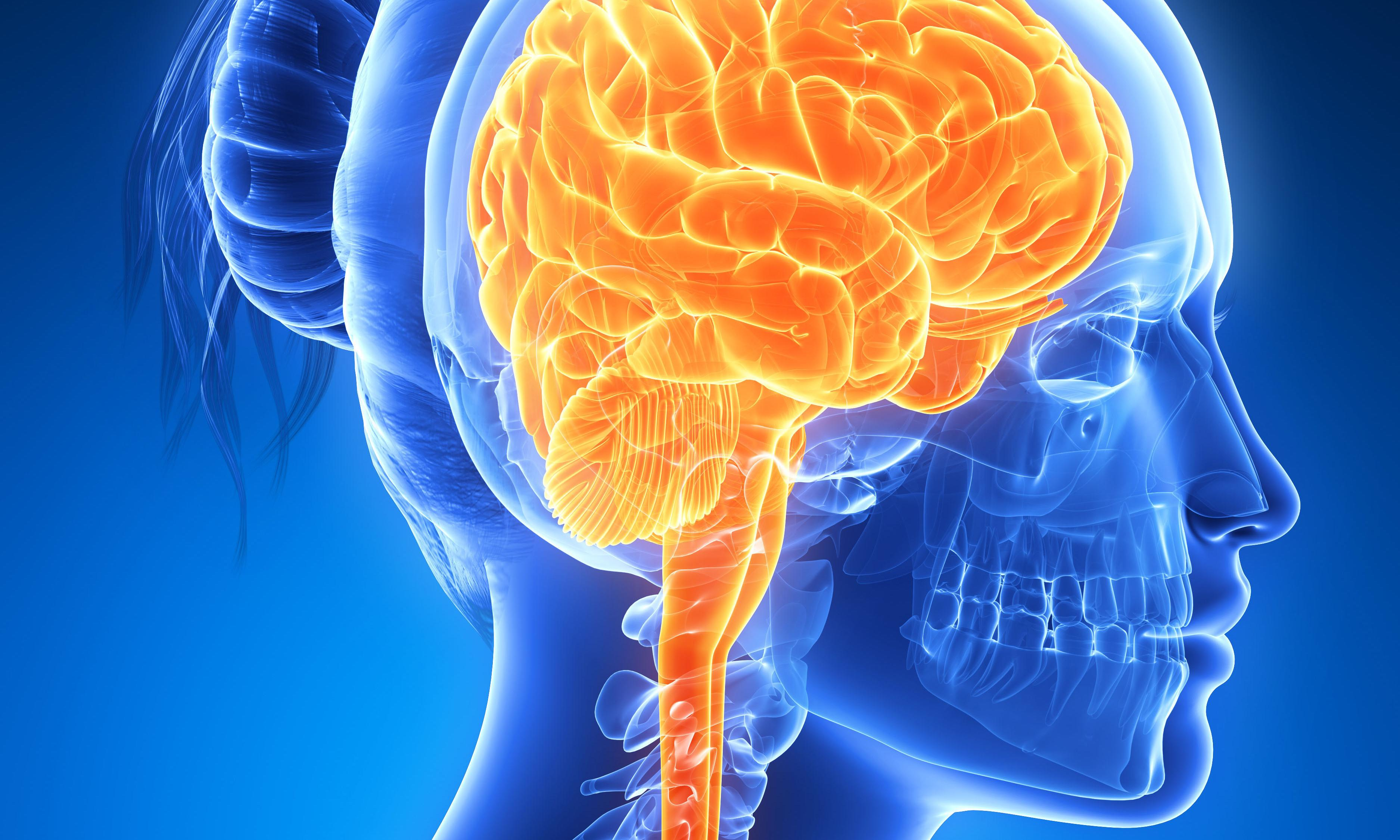 Enough of the neurosexist bilge. It's not all pink and blue when it comes to our brains