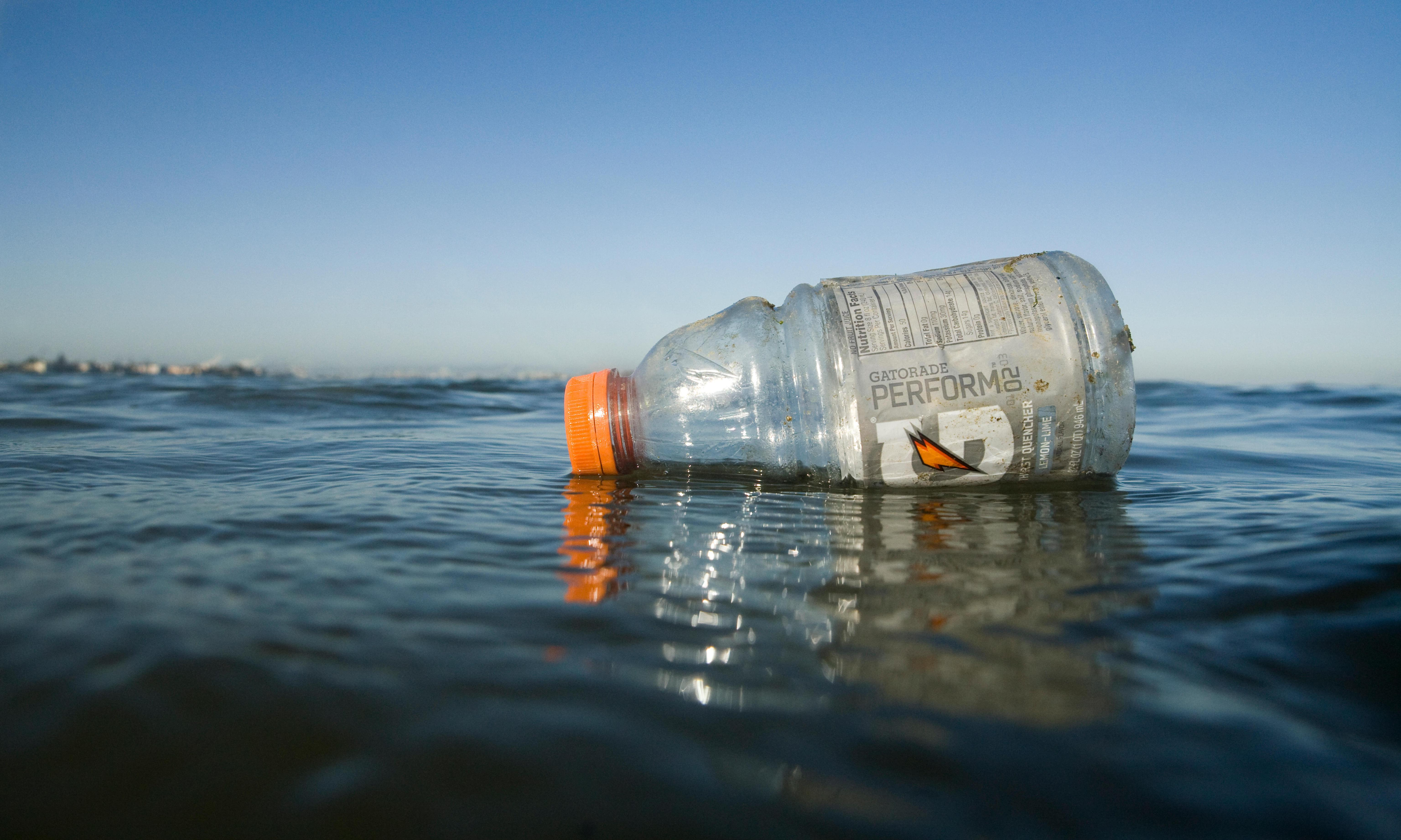 'Everywhere we looked': trillions of microplastics found in San Francisco bay