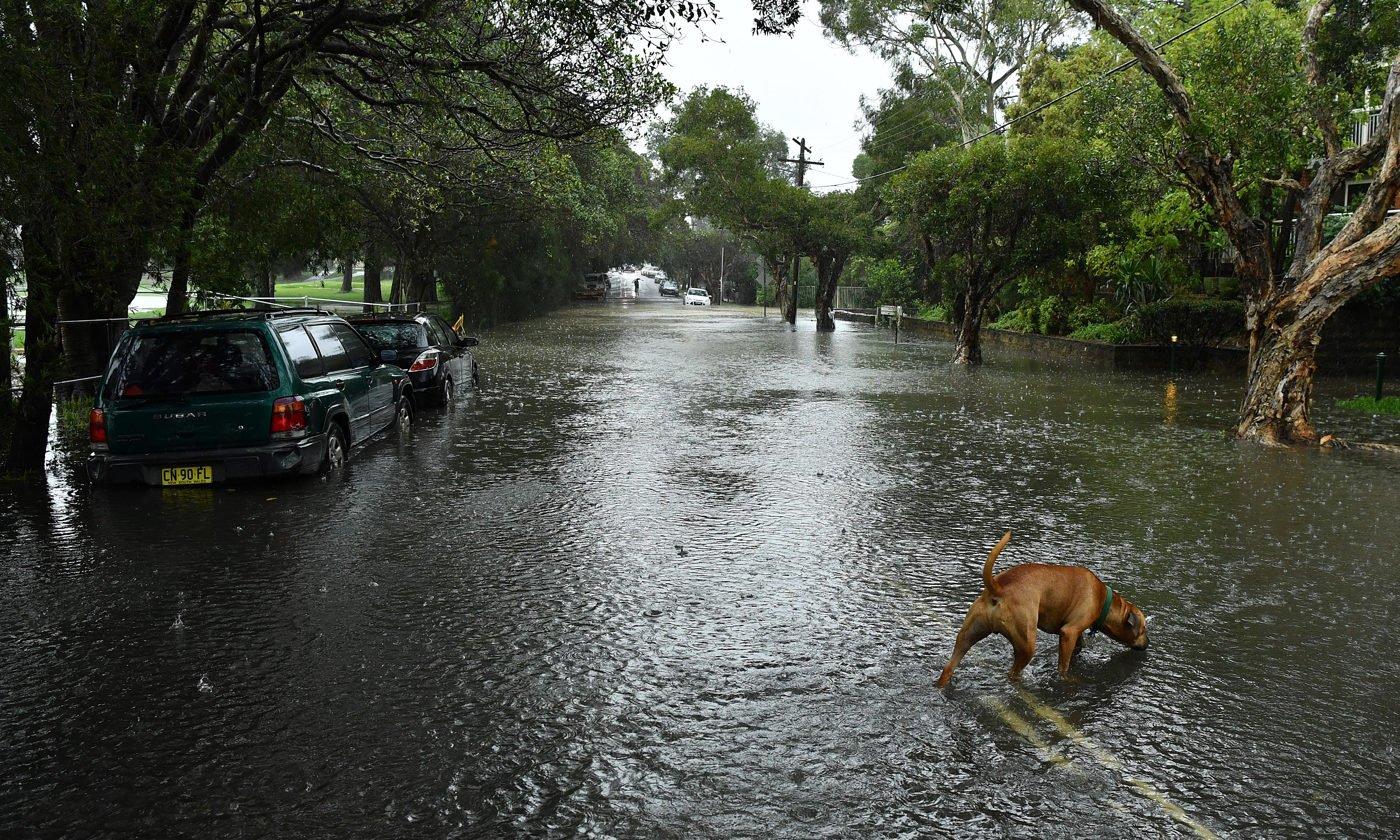 NSW weather: residents evacuated from flooded areas and thousands left without power