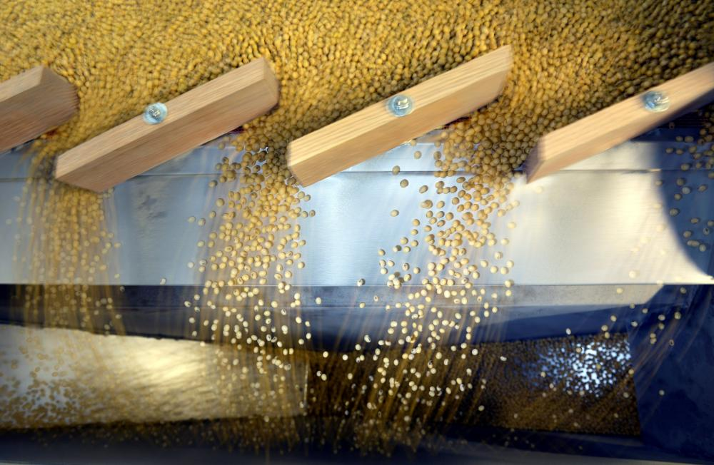Soybeans being sorted on a gravity sorter machine in Fargo, North Dakota