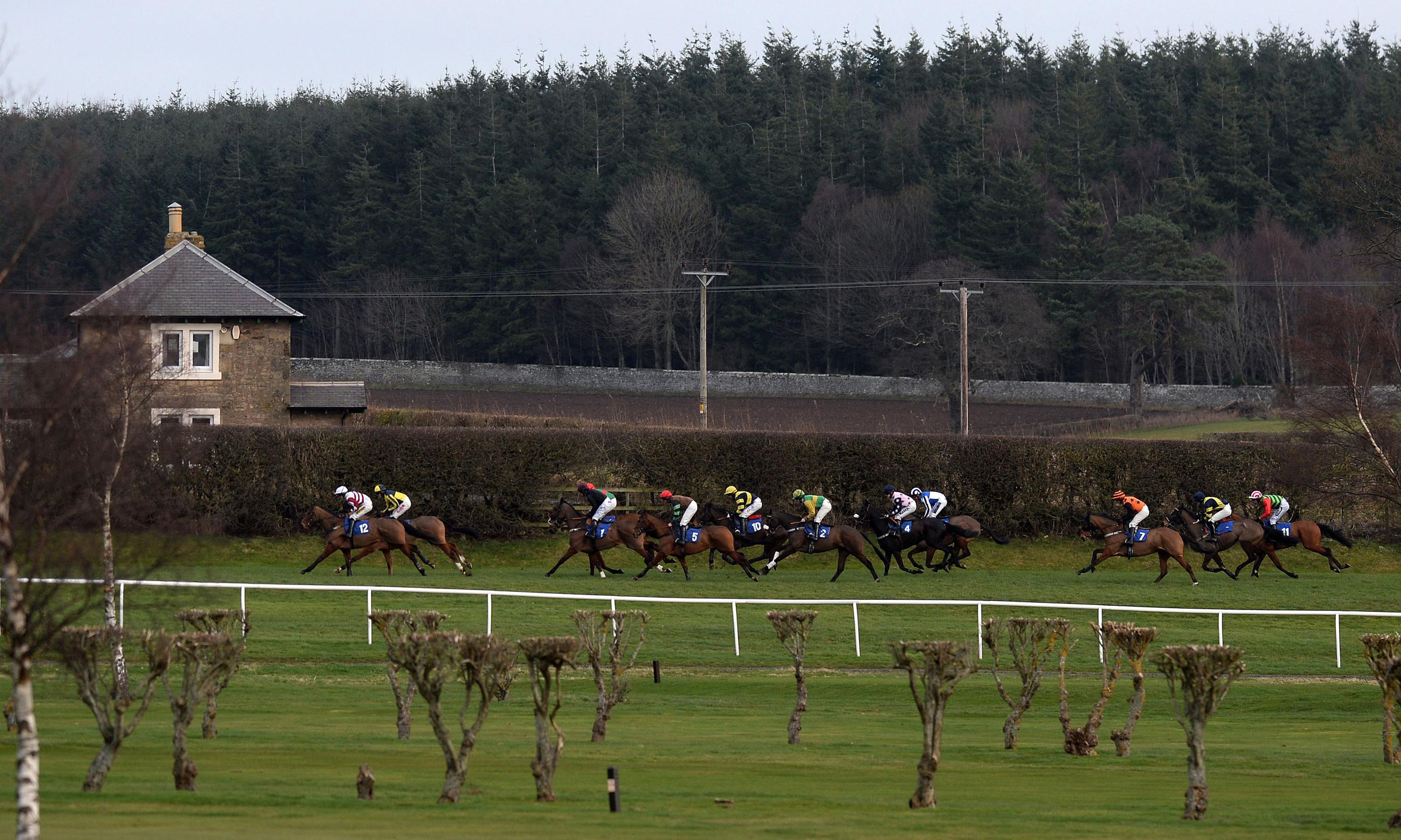 Talking Horses: Bank on Blue Flight soaring to success at Kelso