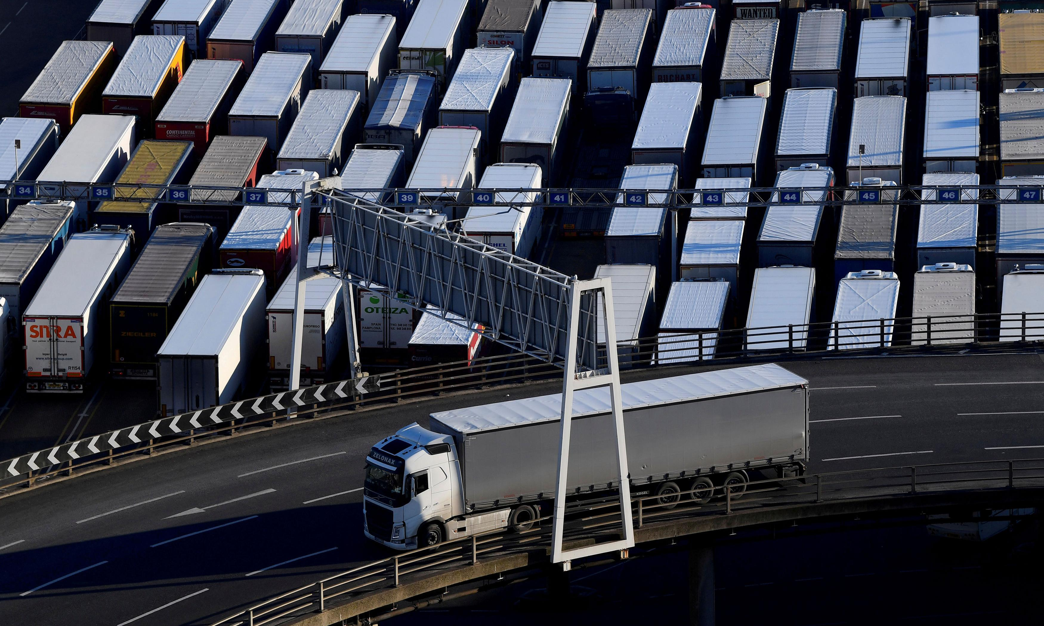 Government's no-deal funds for ports decried as 'too little, too late'